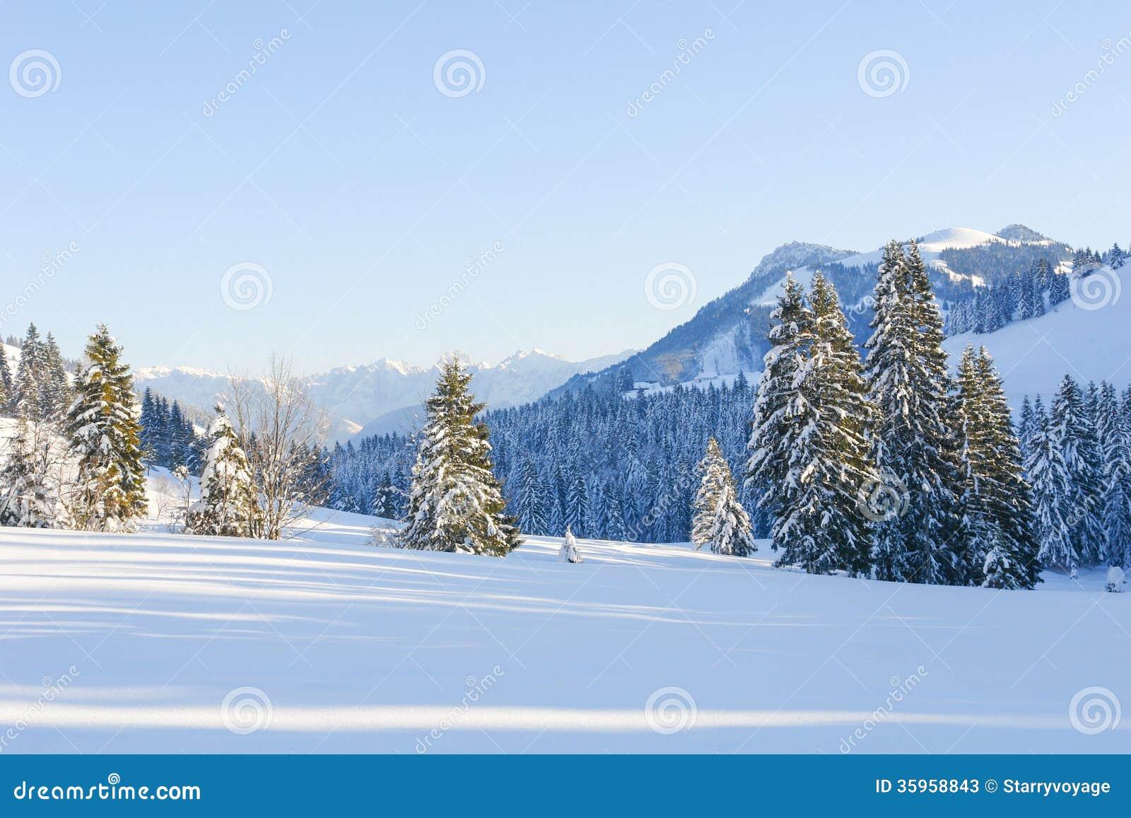 Árboles Nevado IV