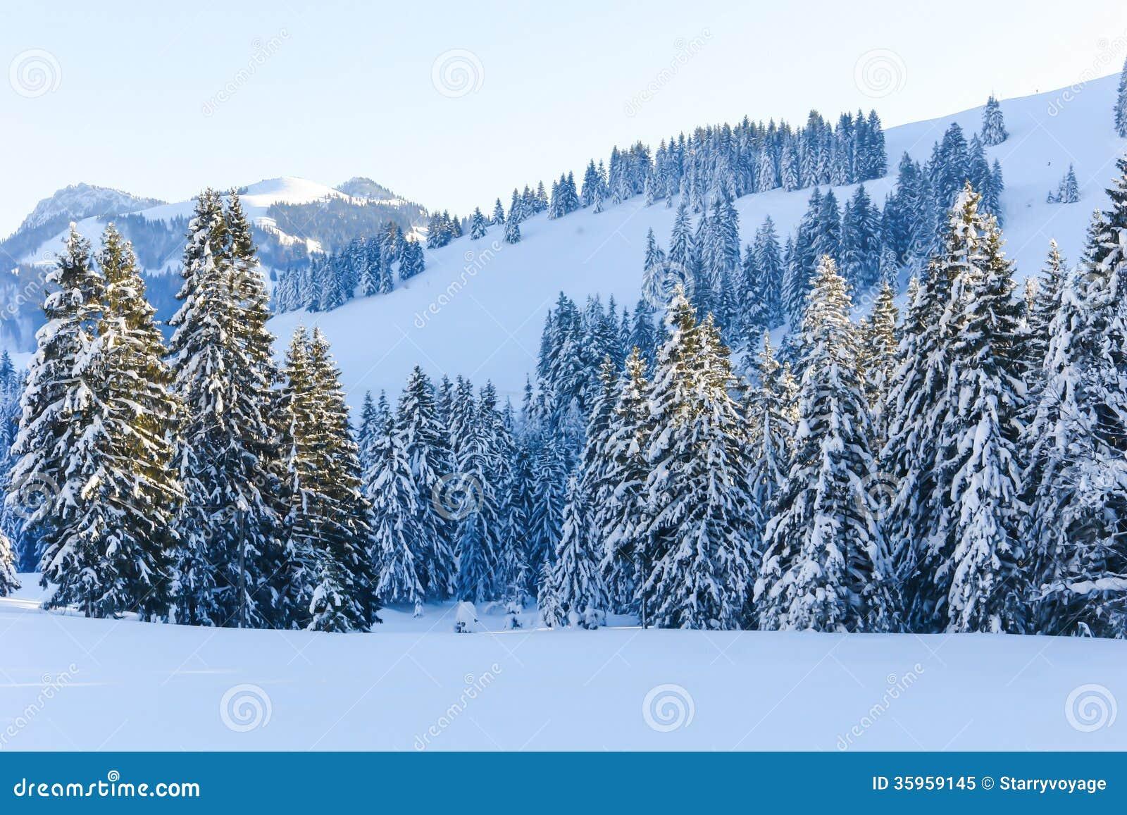 Árboles Nevado V