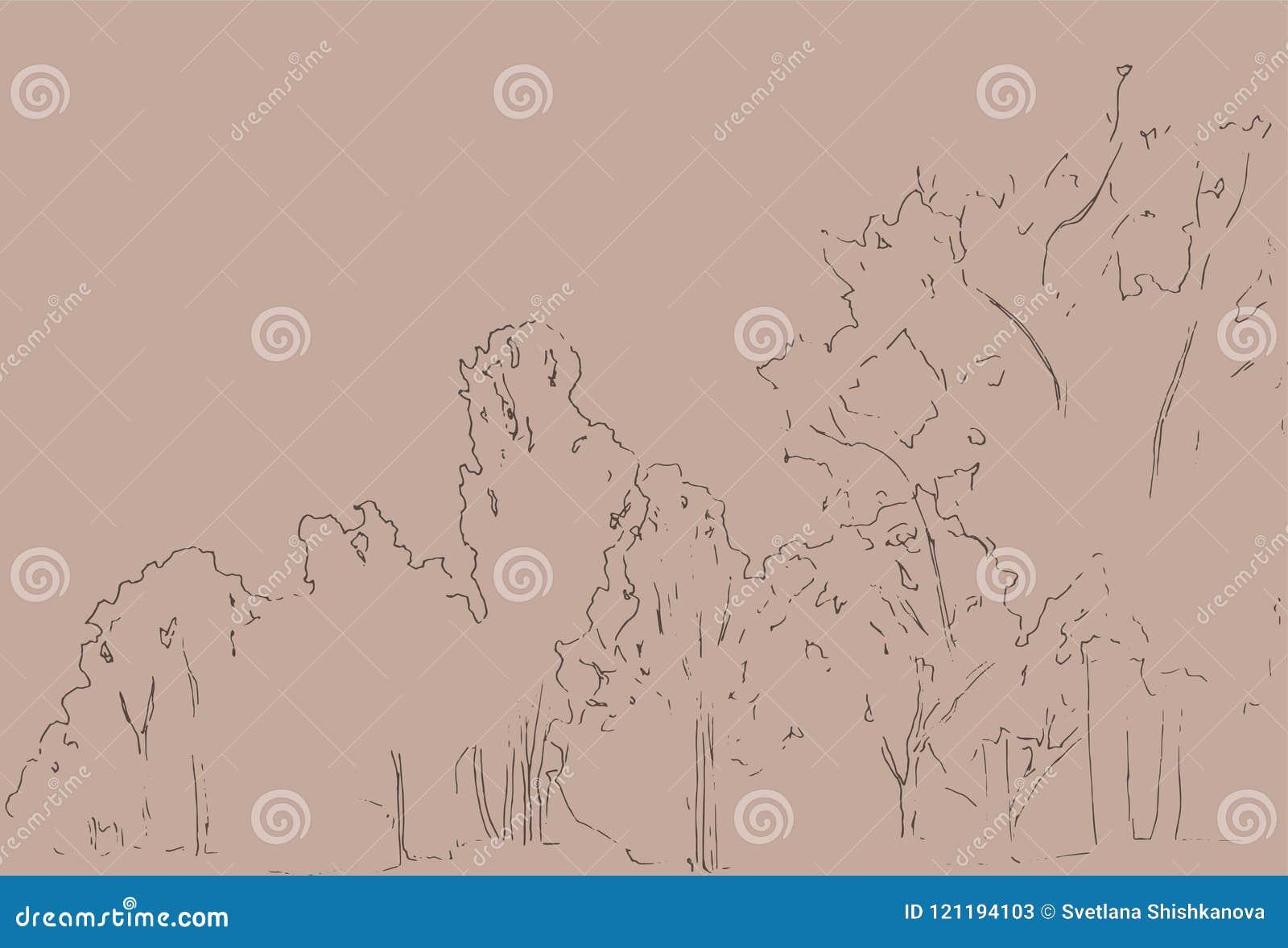 Árboles y bosquejo de los arbustos Dibujo linear del paisaje Ilustración drenada mano Bosque en el fondo blanco Línea negra diseñ