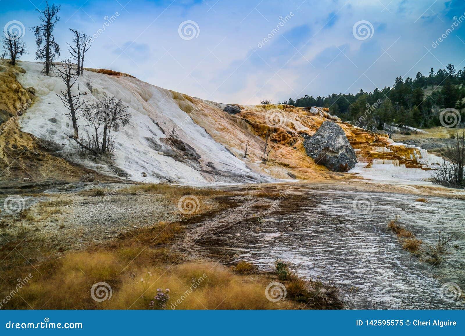 A área de Mammoth Hot Springs no parque nacional de Yellowstone, Wyoming
