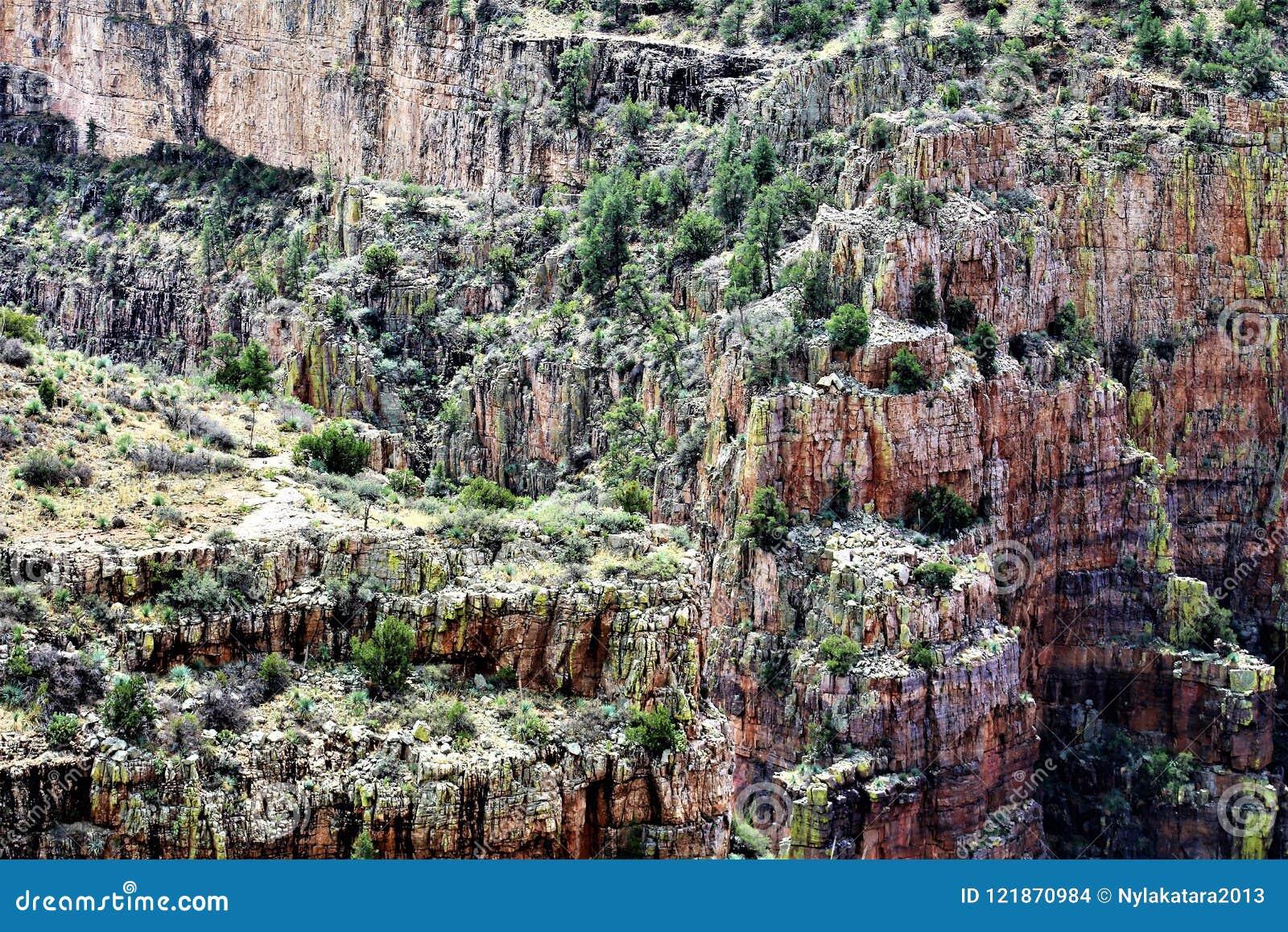 Área de região selvagem da garganta de Salt River, floresta nacional de Tonto, Gila County, o Arizona, Estados Unidos