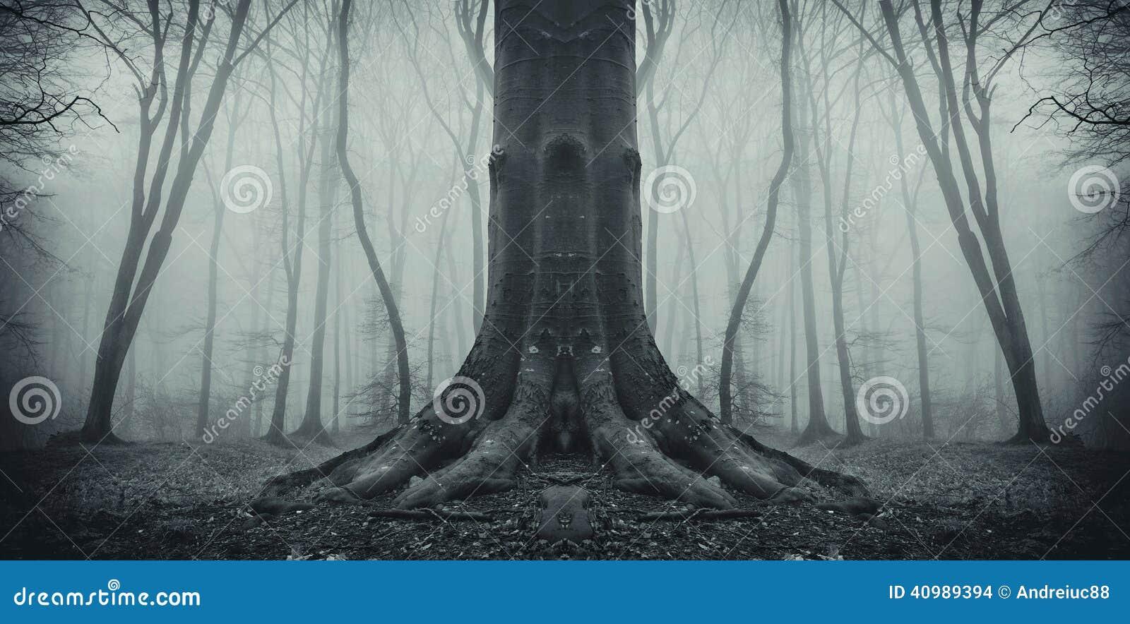Árvore assustador simétrica na floresta com névoa