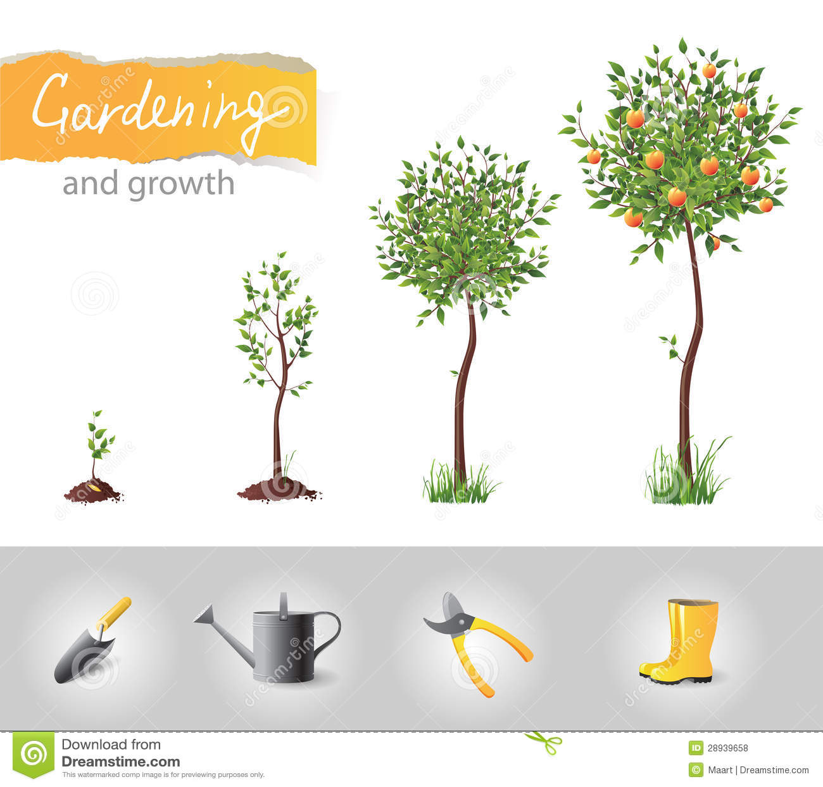 Árvore crescente
