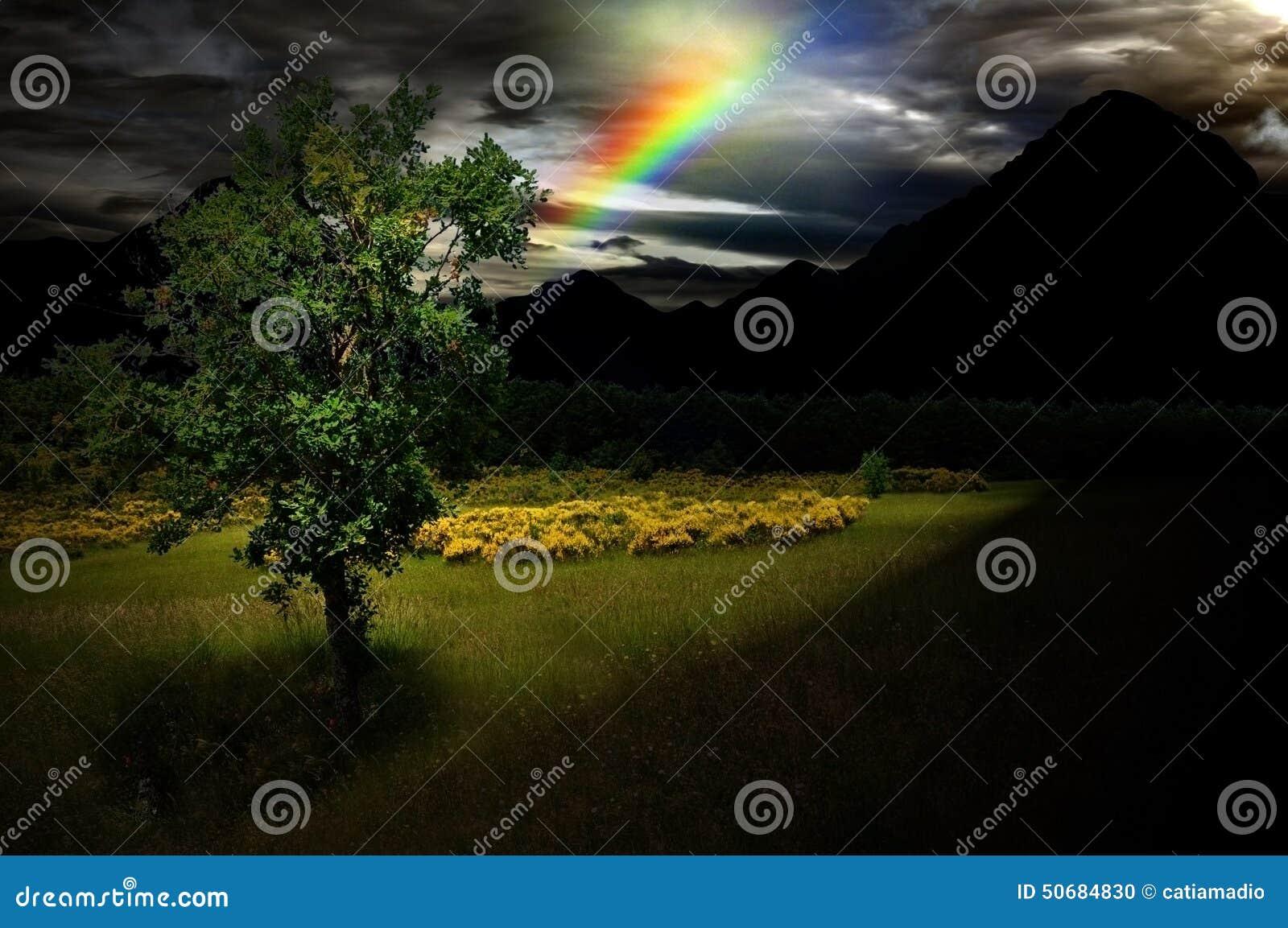 Árvore da esperança na escuridão