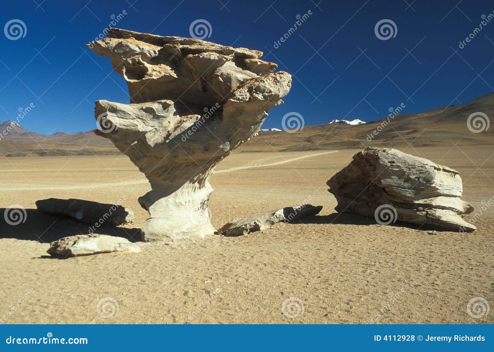 Árvore da pedra