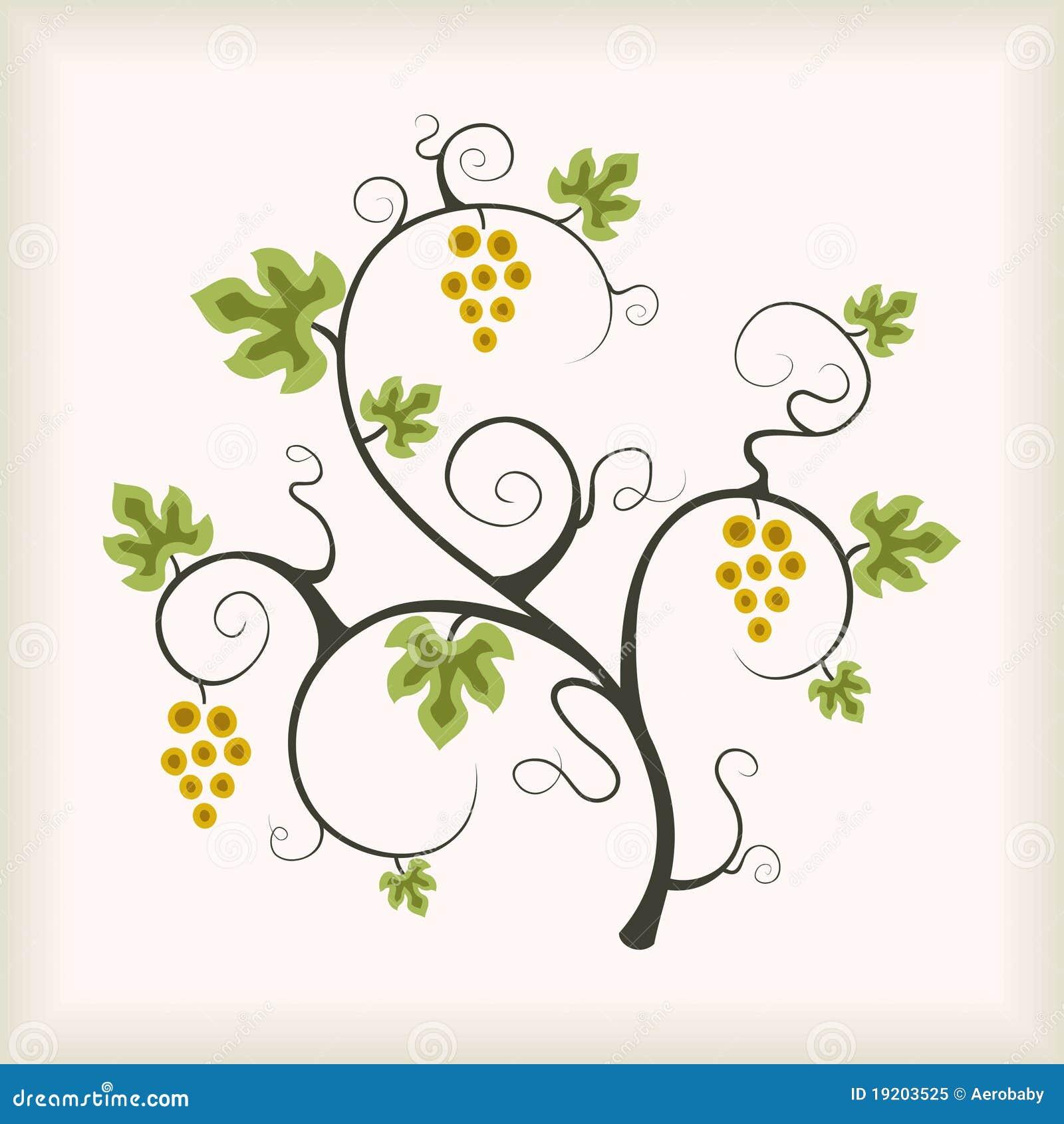 Árvore da vinha.