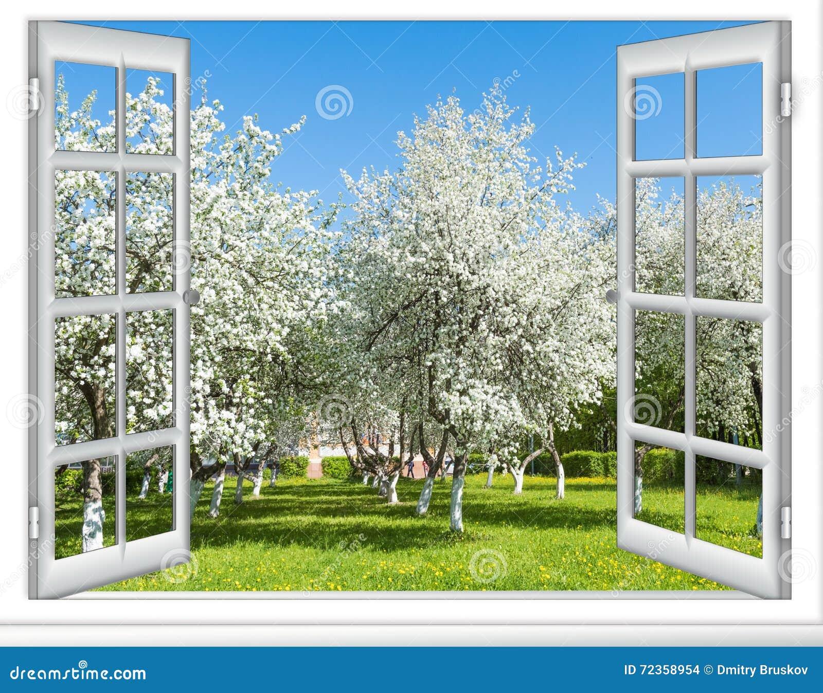 Árvore de florescência da janela da vista