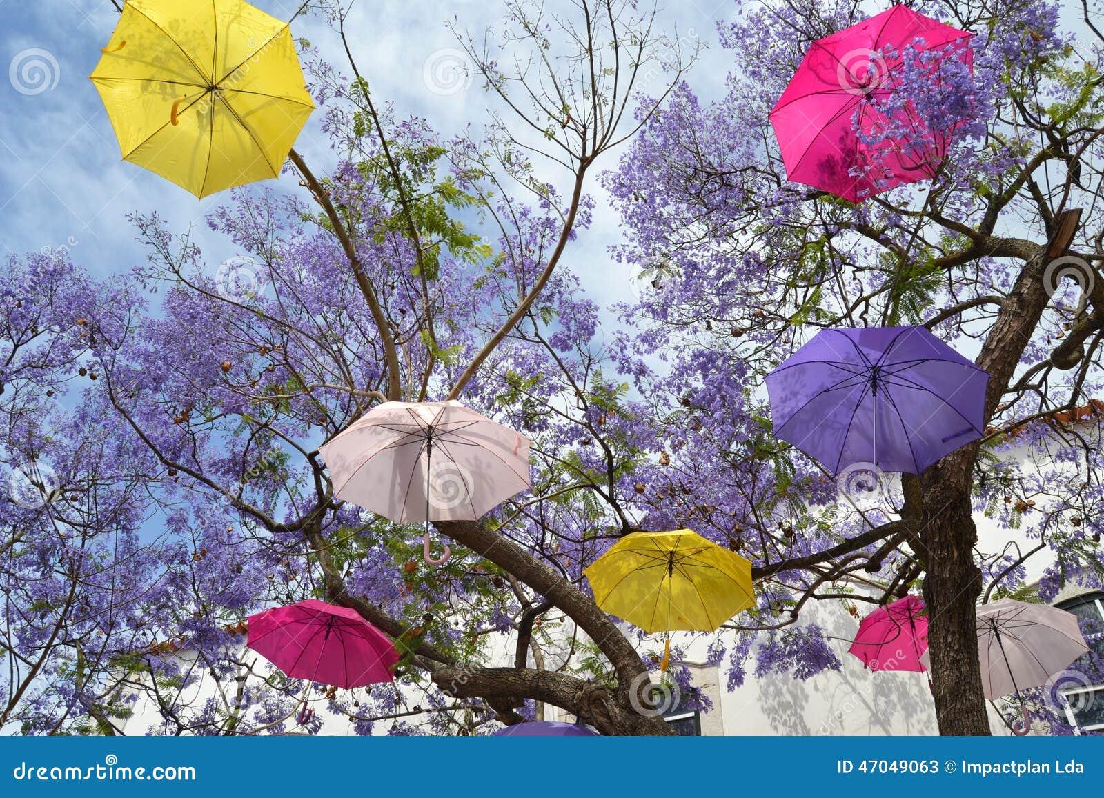 Árvore de guarda-chuva de flutuação