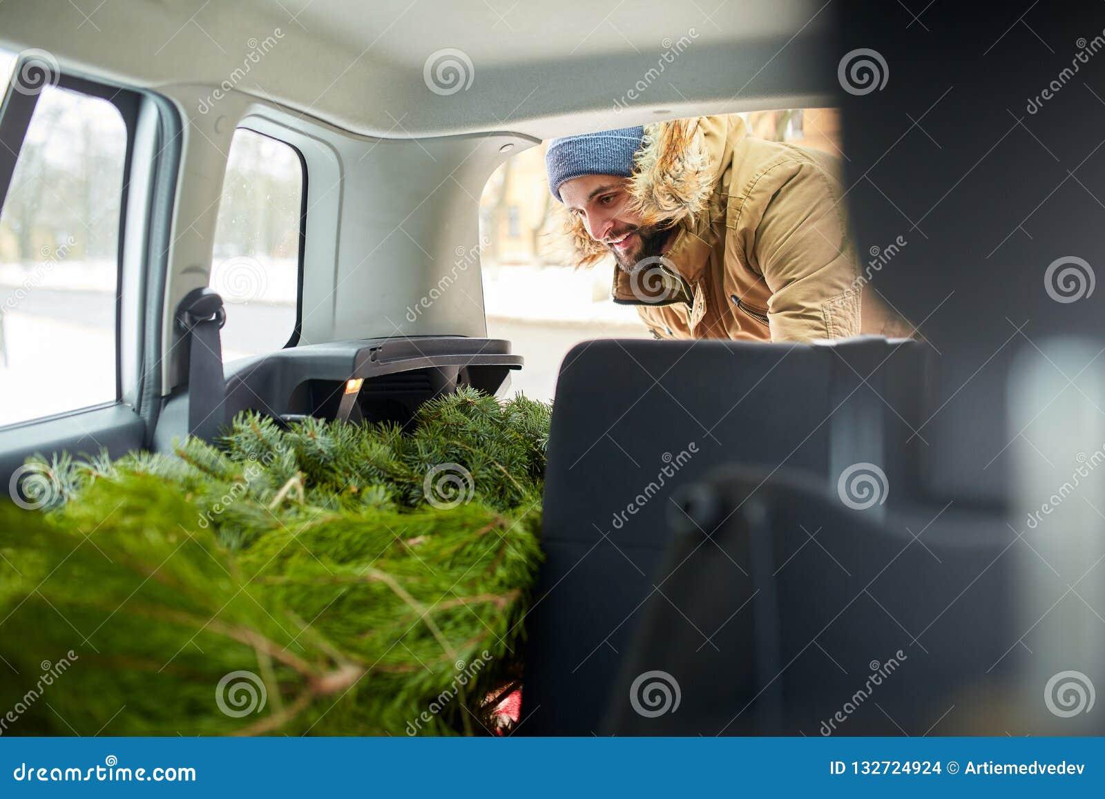 Árvore de Natal de carregamento do homem farpado no tronco de seu carro, dentro da vista O moderno põe a árvore de abeto na parte
