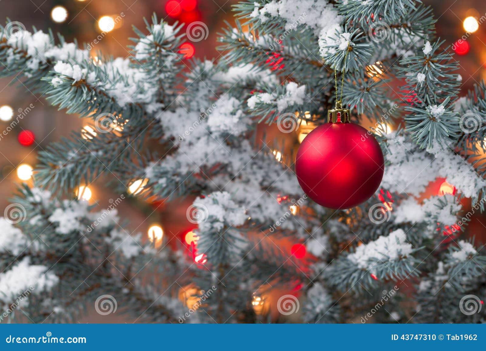 Árvore de Natal coberto de neve com suspensão do ornamento vermelho