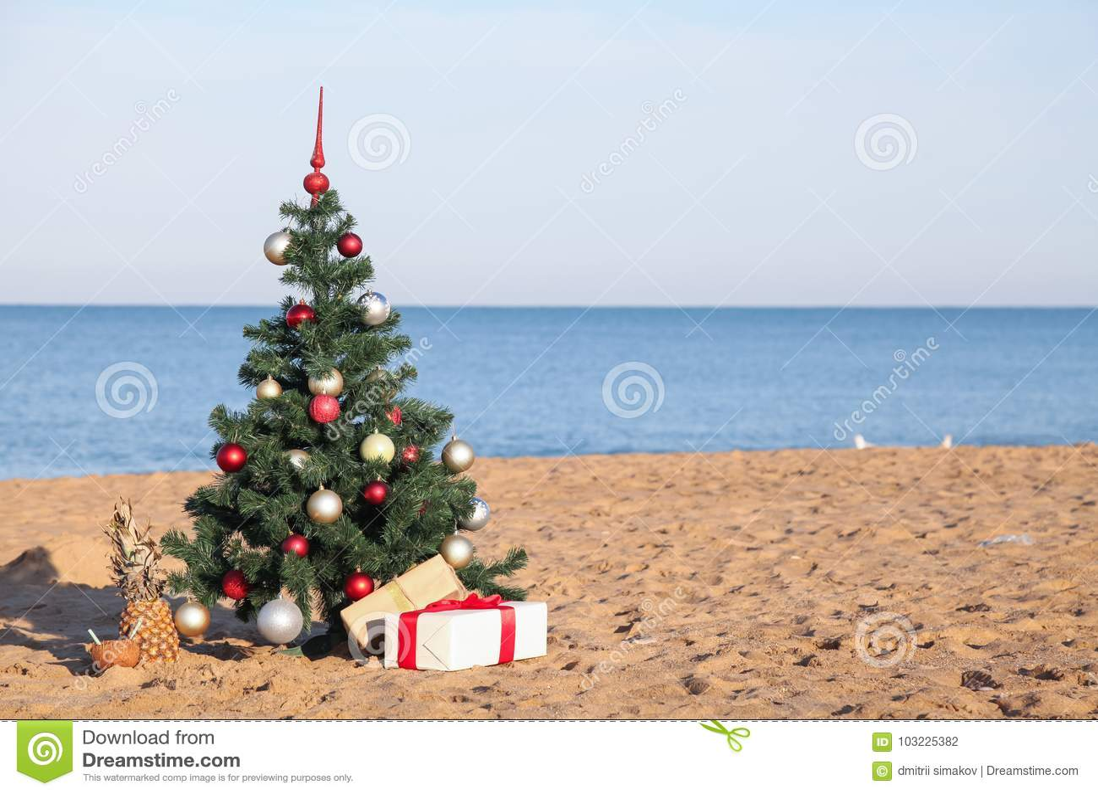 Árvore de Natal com o presente do recurso tropical na praia