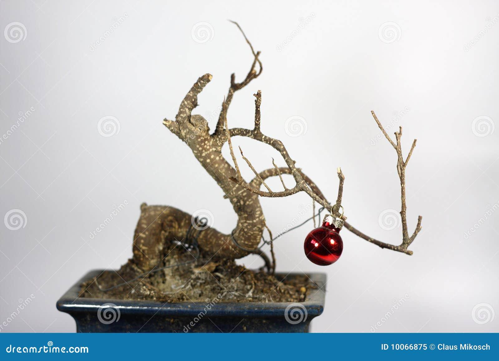 Árvore de Natal da crise