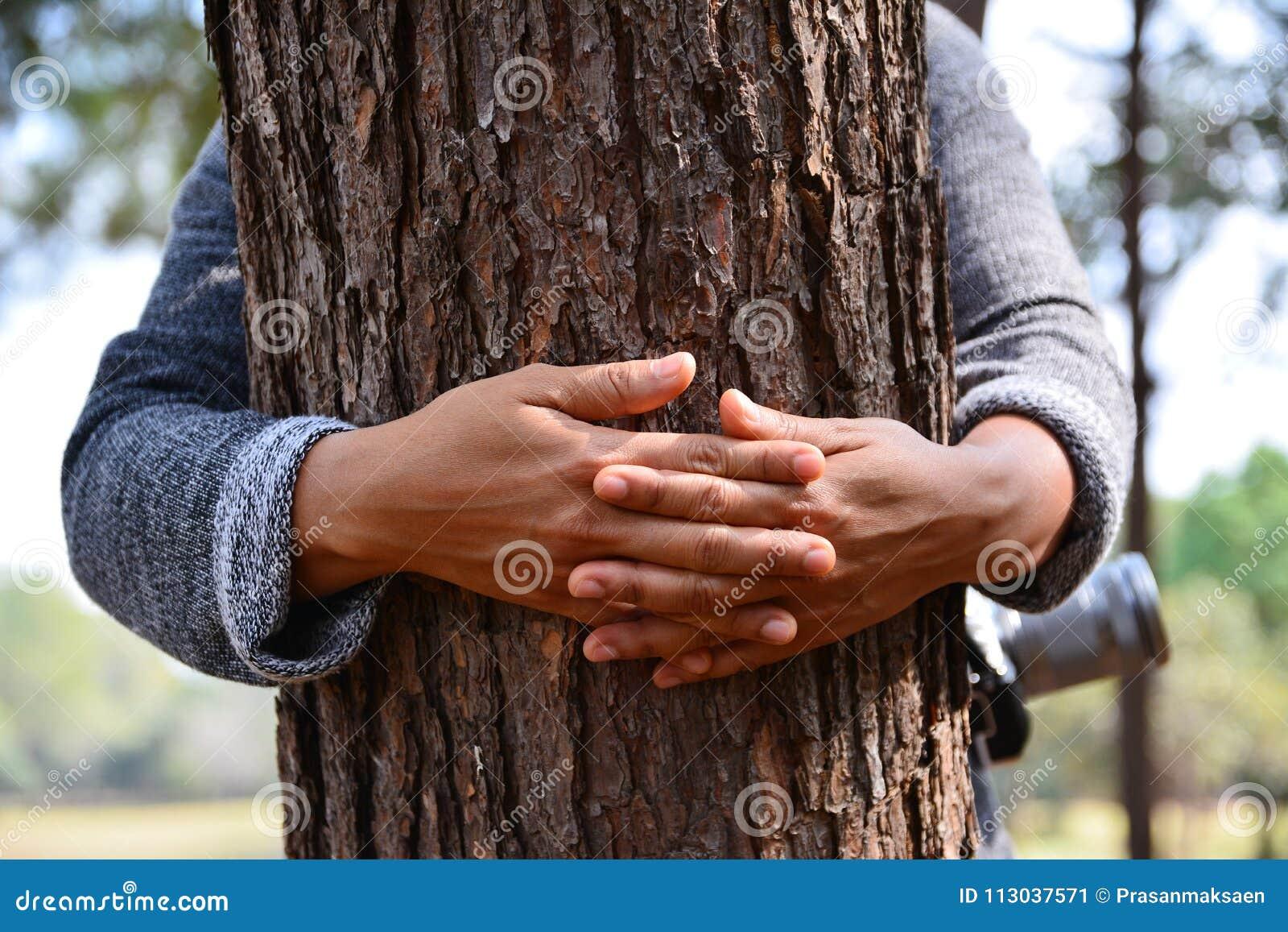 Árvore do abraço da mão das mulheres