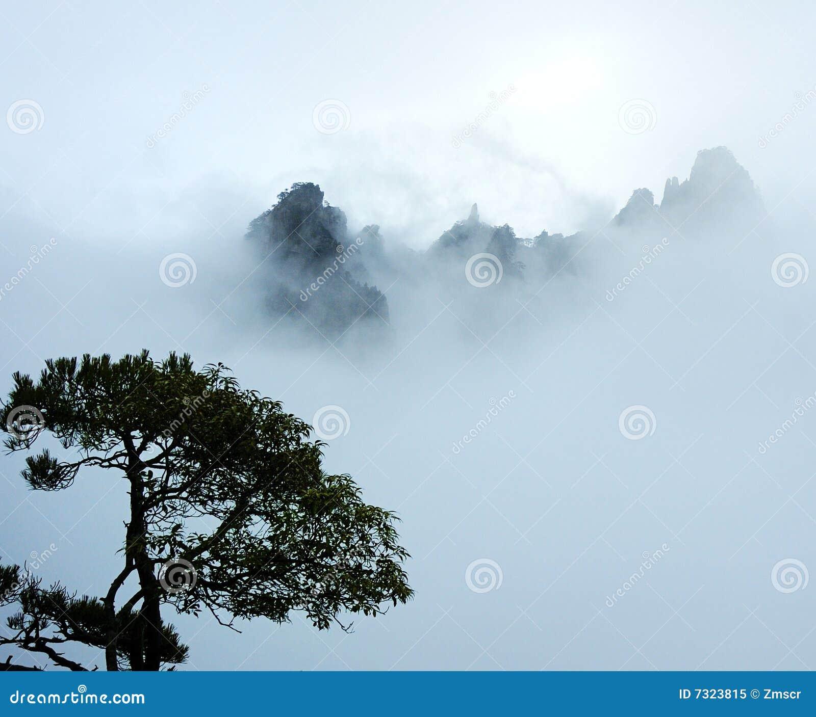 Árvore e montanha na névoa