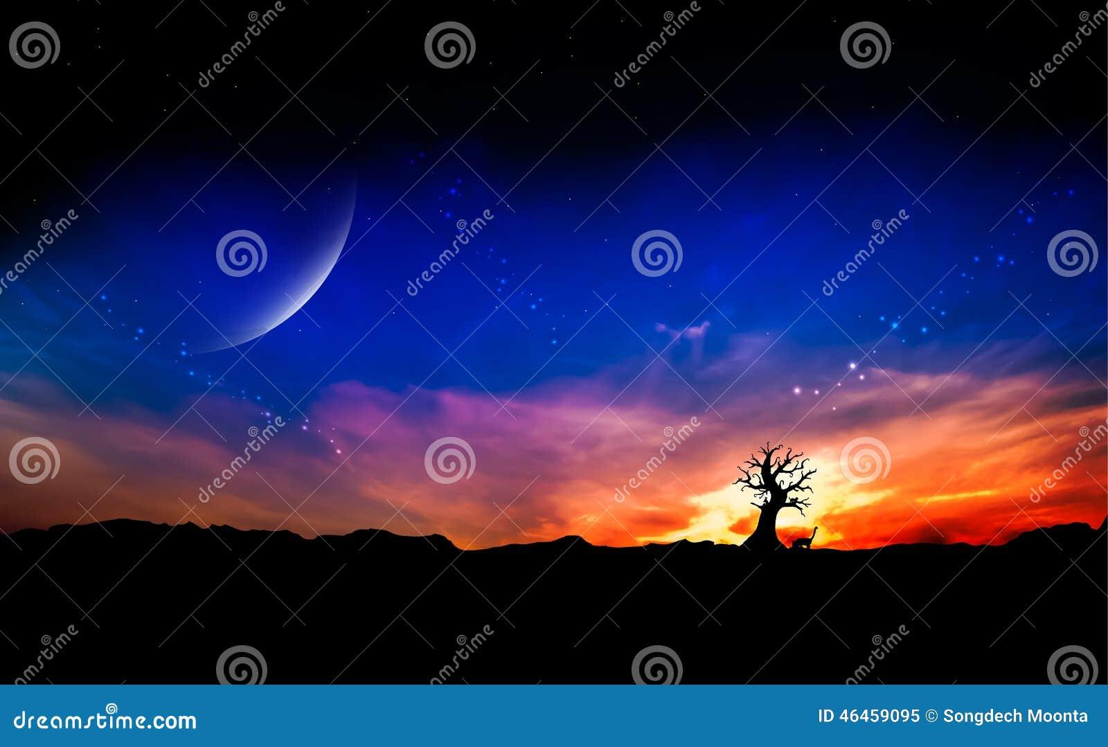Árvore inoperante no por do sol