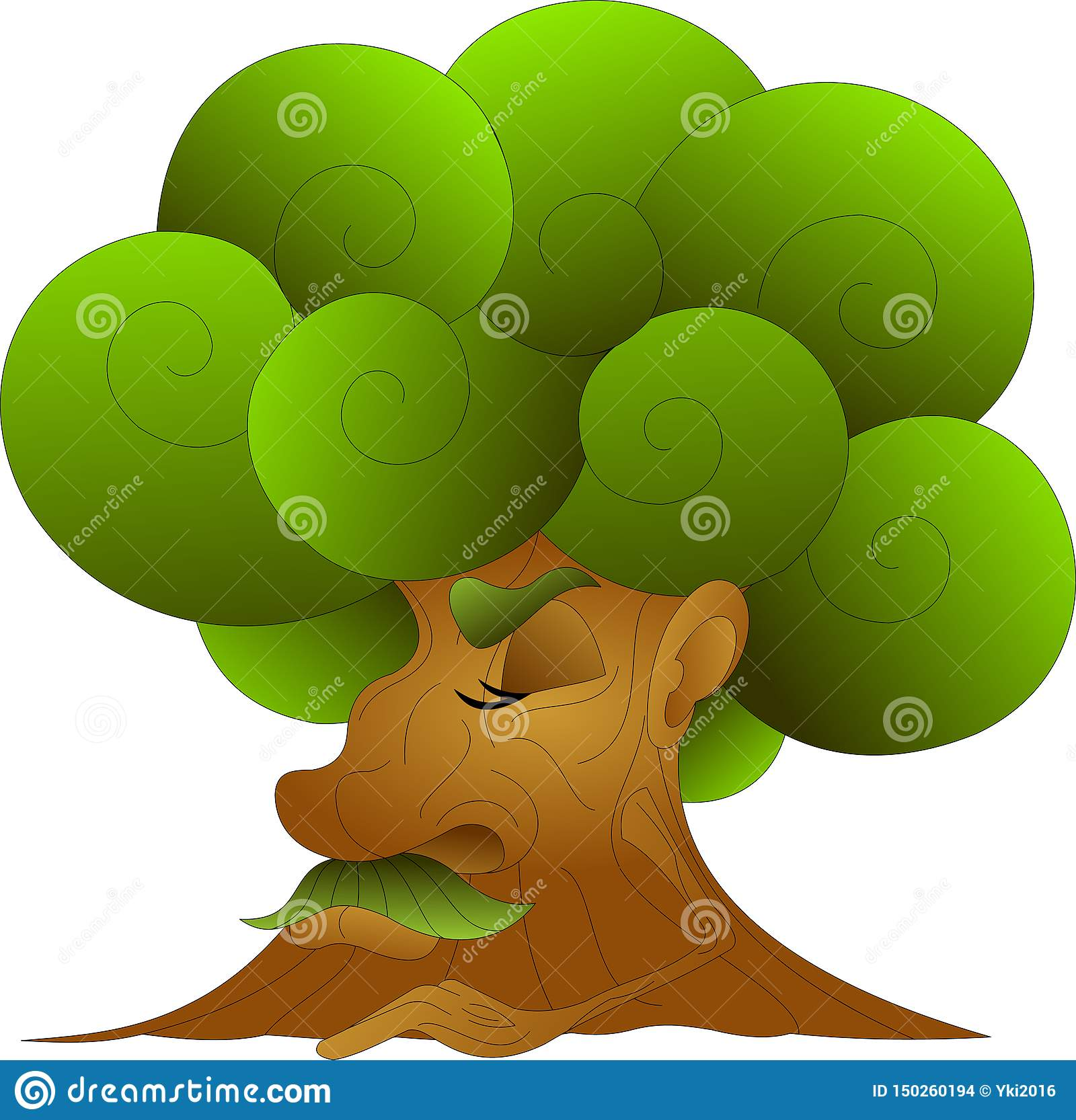 Árvore sábia velha com uma coroa luxúria, verde, aplanando