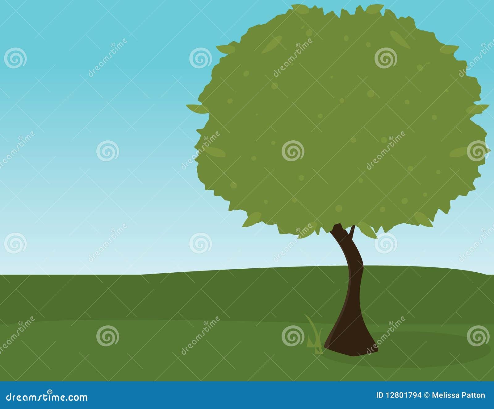 Árvore verde ao ar livre 2