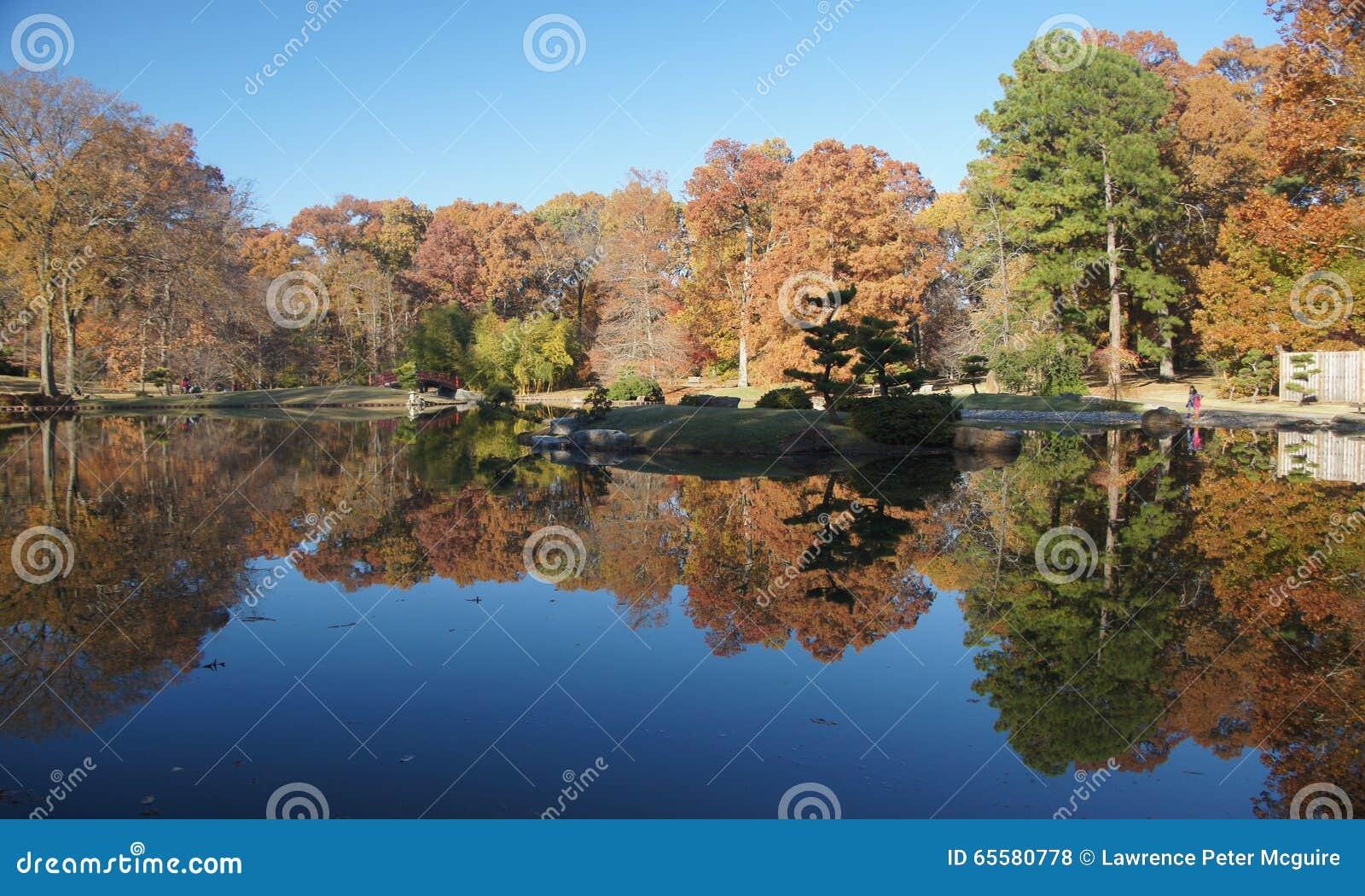 Árvores da queda que negligenciam a lagoa