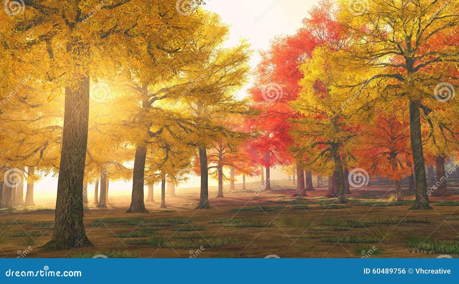 Árvores de floresta do outono em cores mágicas
