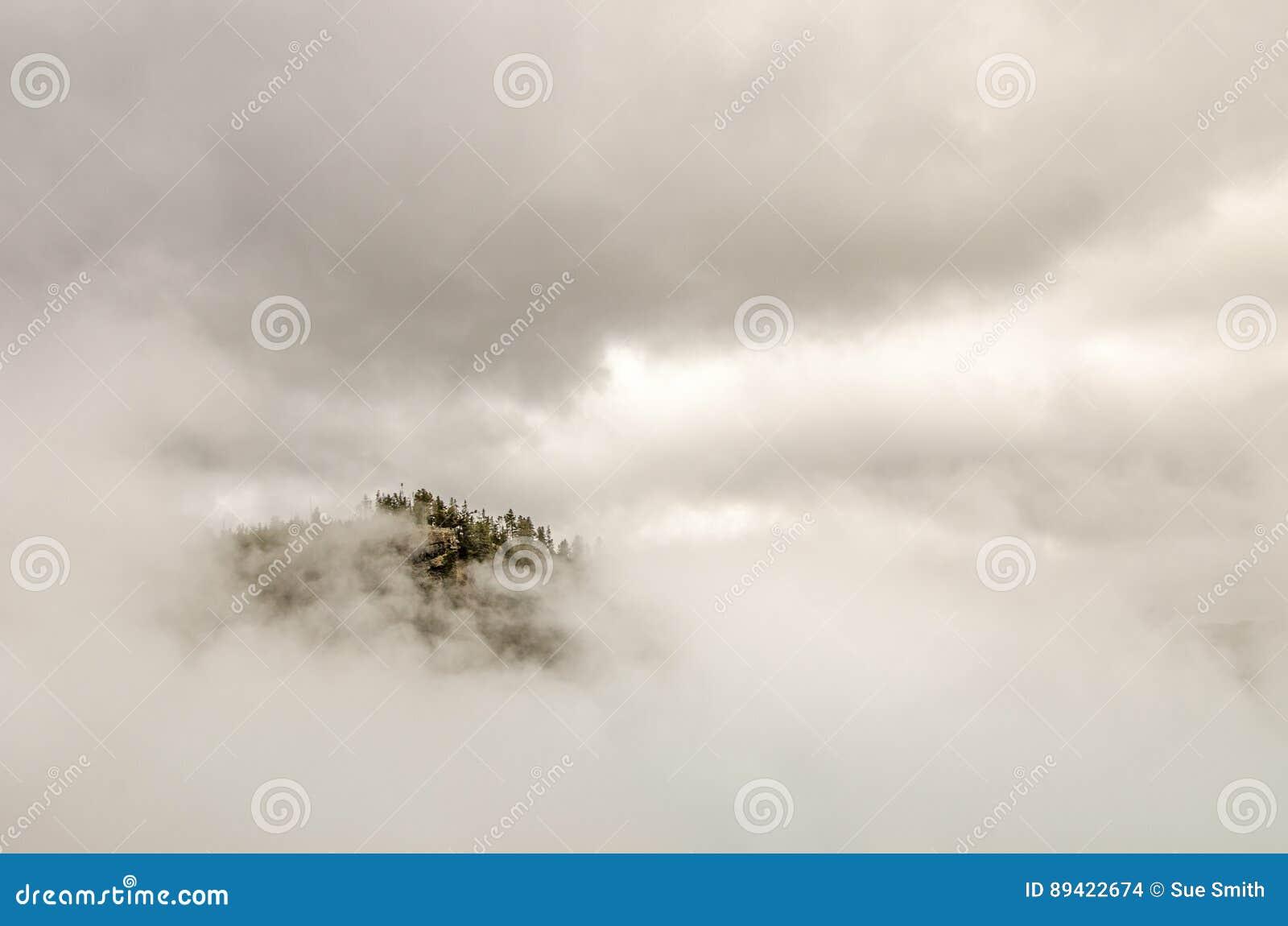 Árvores e rochas que espreitam através das nuvens e da névoa