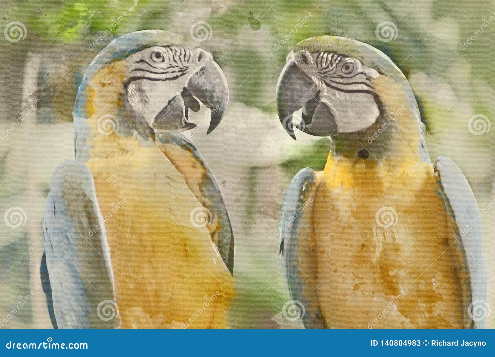 两蓝色&黄色鹦鹉的美术的被转换的图象
