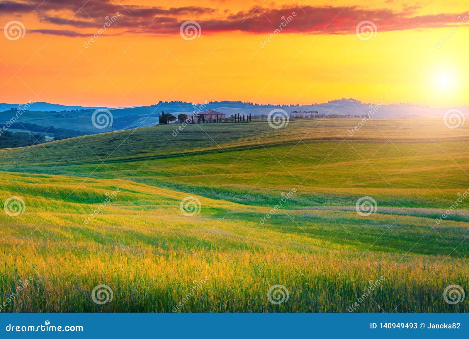 与五颜六色的日落和粮田,意大利的令人惊讶的托斯卡纳风景