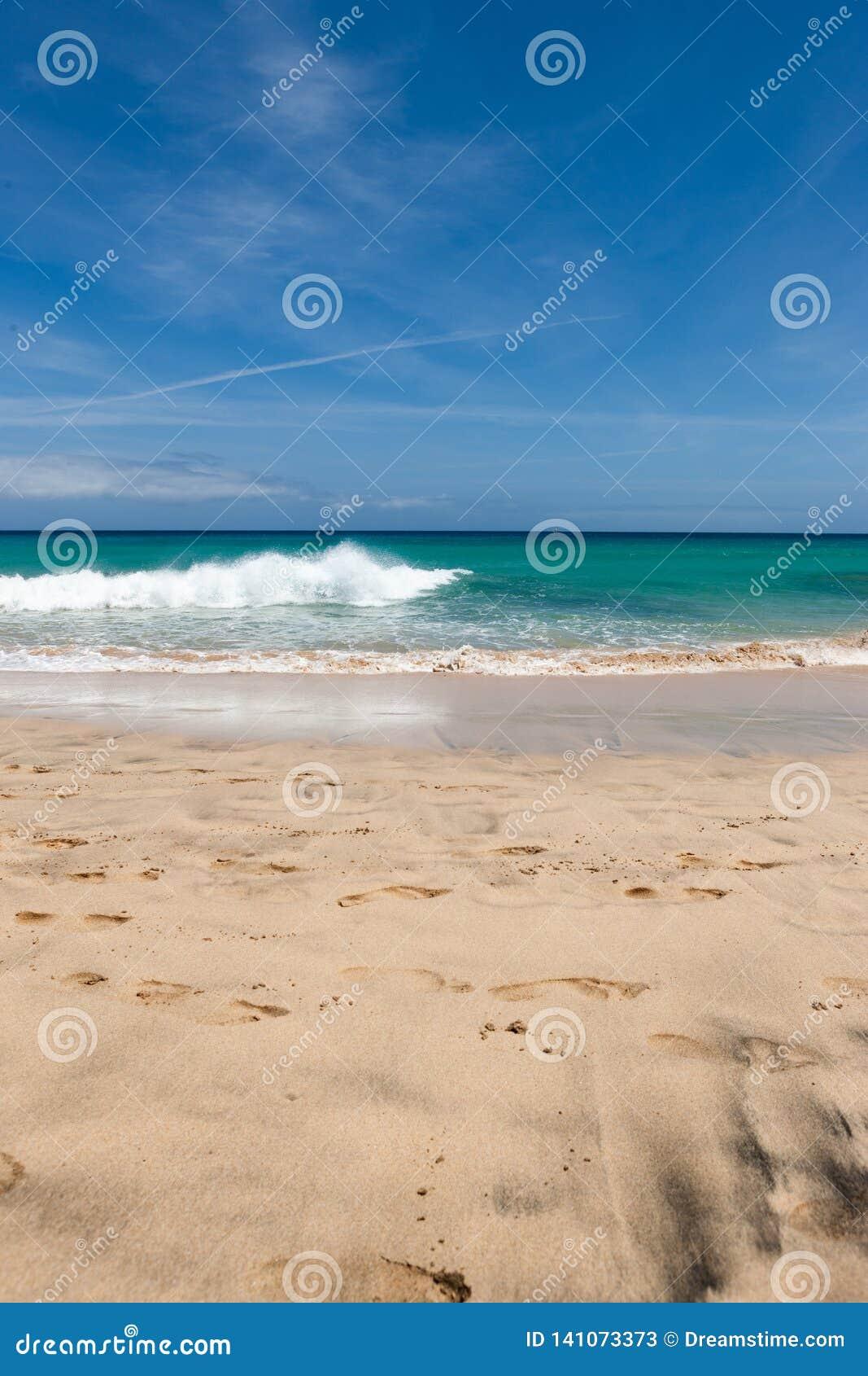 与绿松石水和天空蔚蓝的一个美丽的海滩