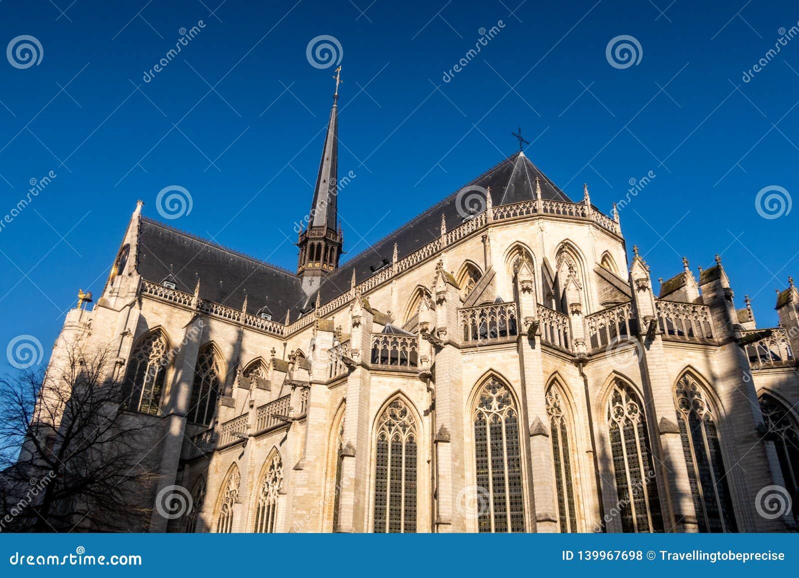 15世纪圣彼得的教会,在鲁汶市中心,富兰德,比利时