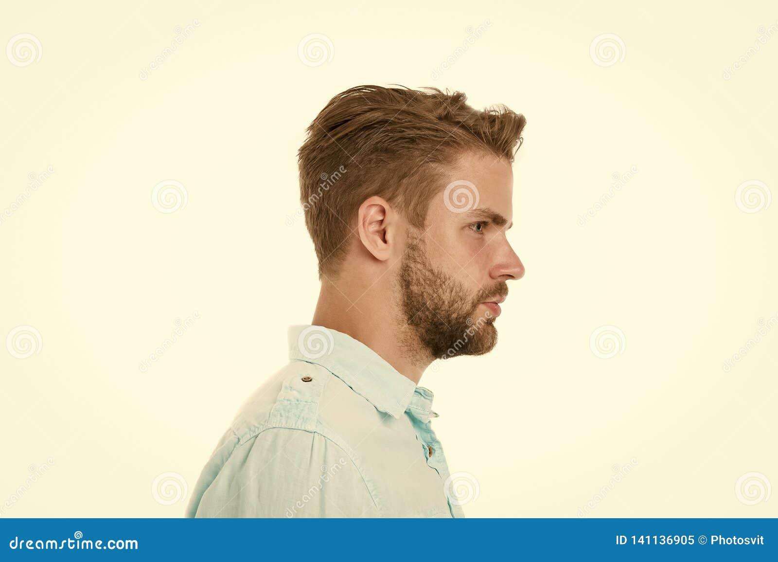 人档案有胡子的在白色背景隔绝的不剃须的面孔 蓝色衬衣的,时尚英俊的人 博若莱红葡萄酒