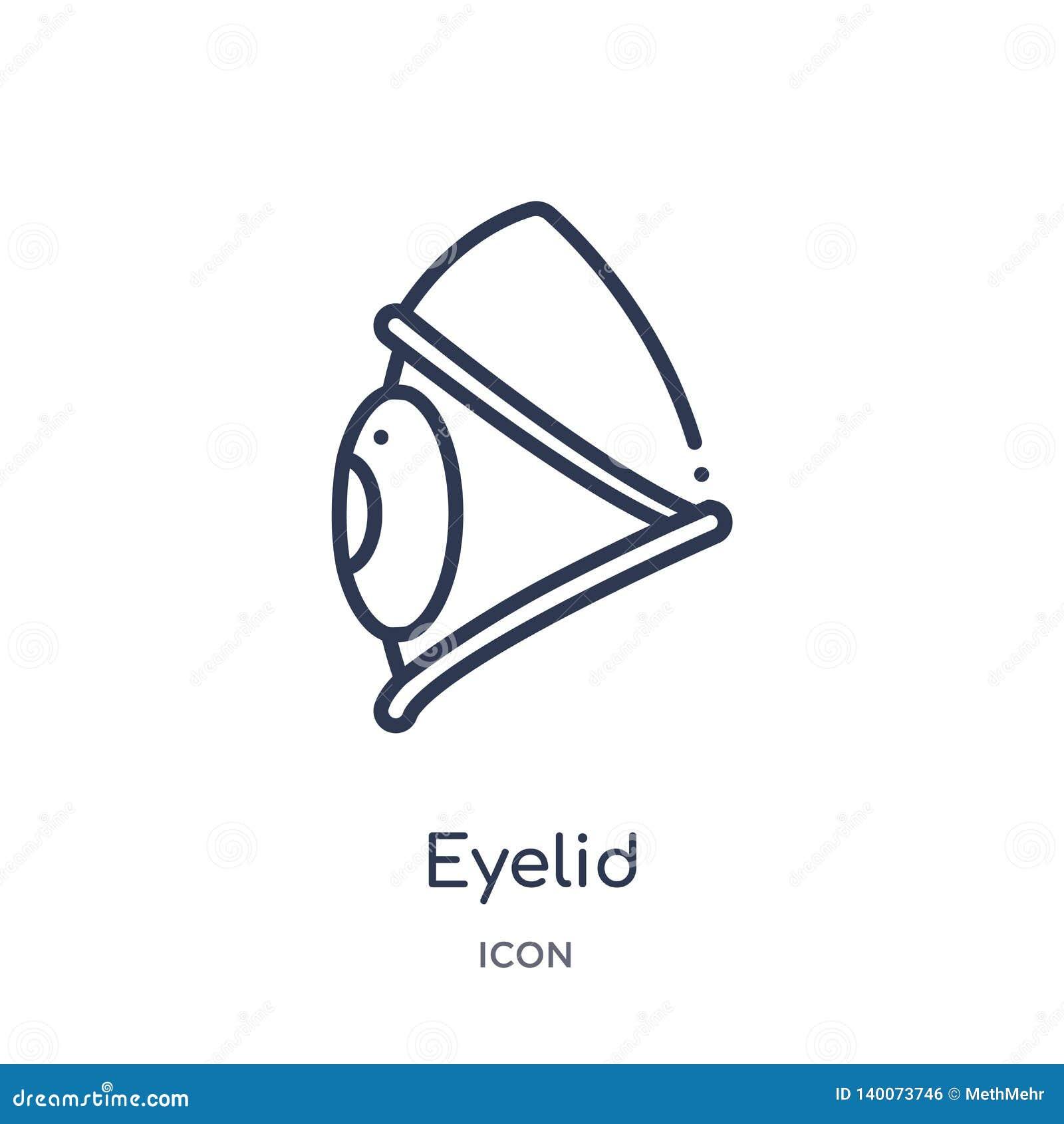 从姿态概述汇集的线性眼皮象 稀薄的线在白色背景隔绝的眼皮象 时髦的眼皮
