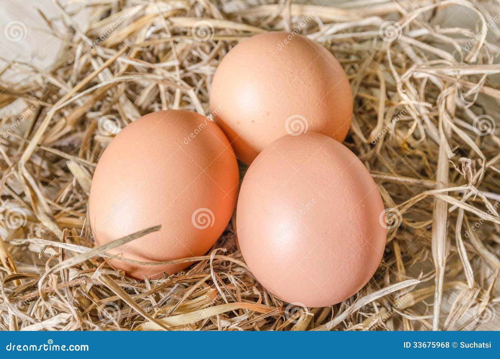 Ägg i hörede