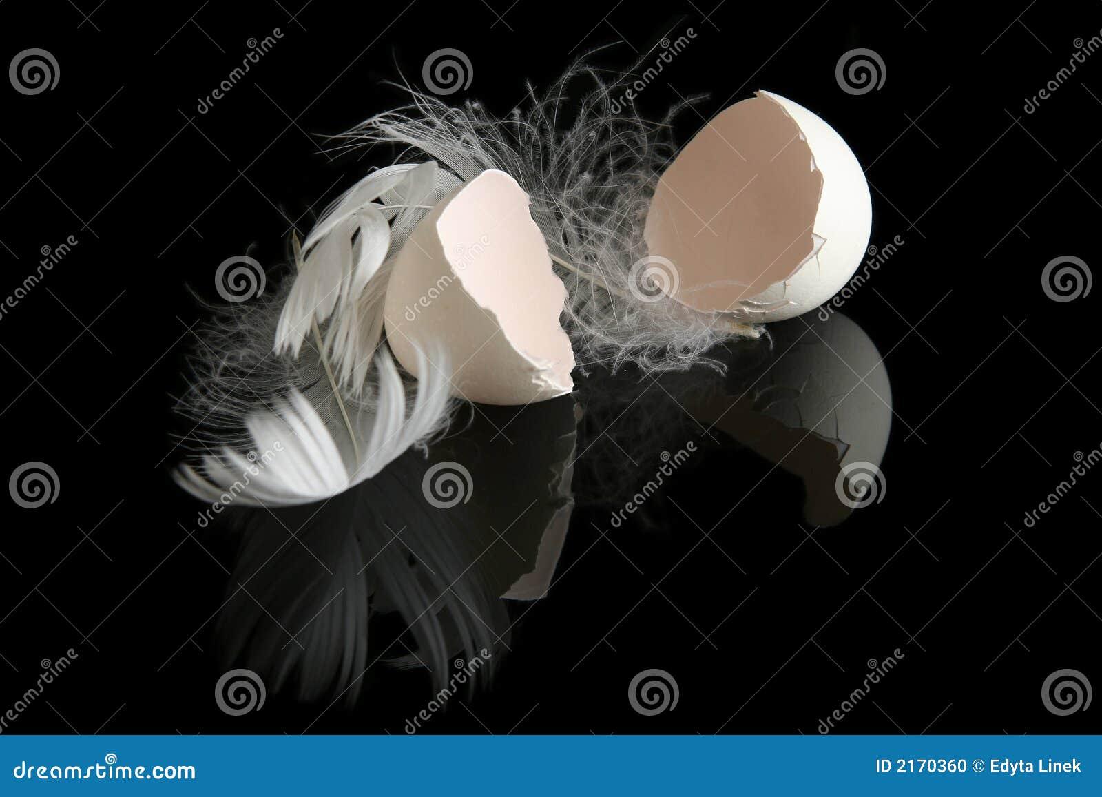 Ägg på black