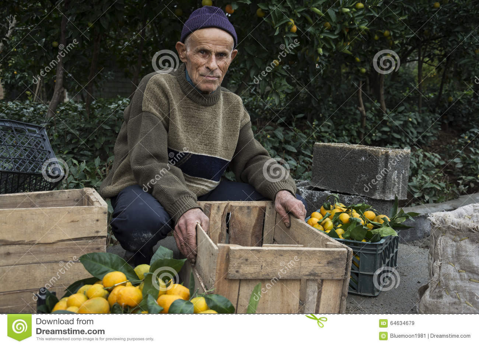Äldre bonde Brought Oranges For Sale