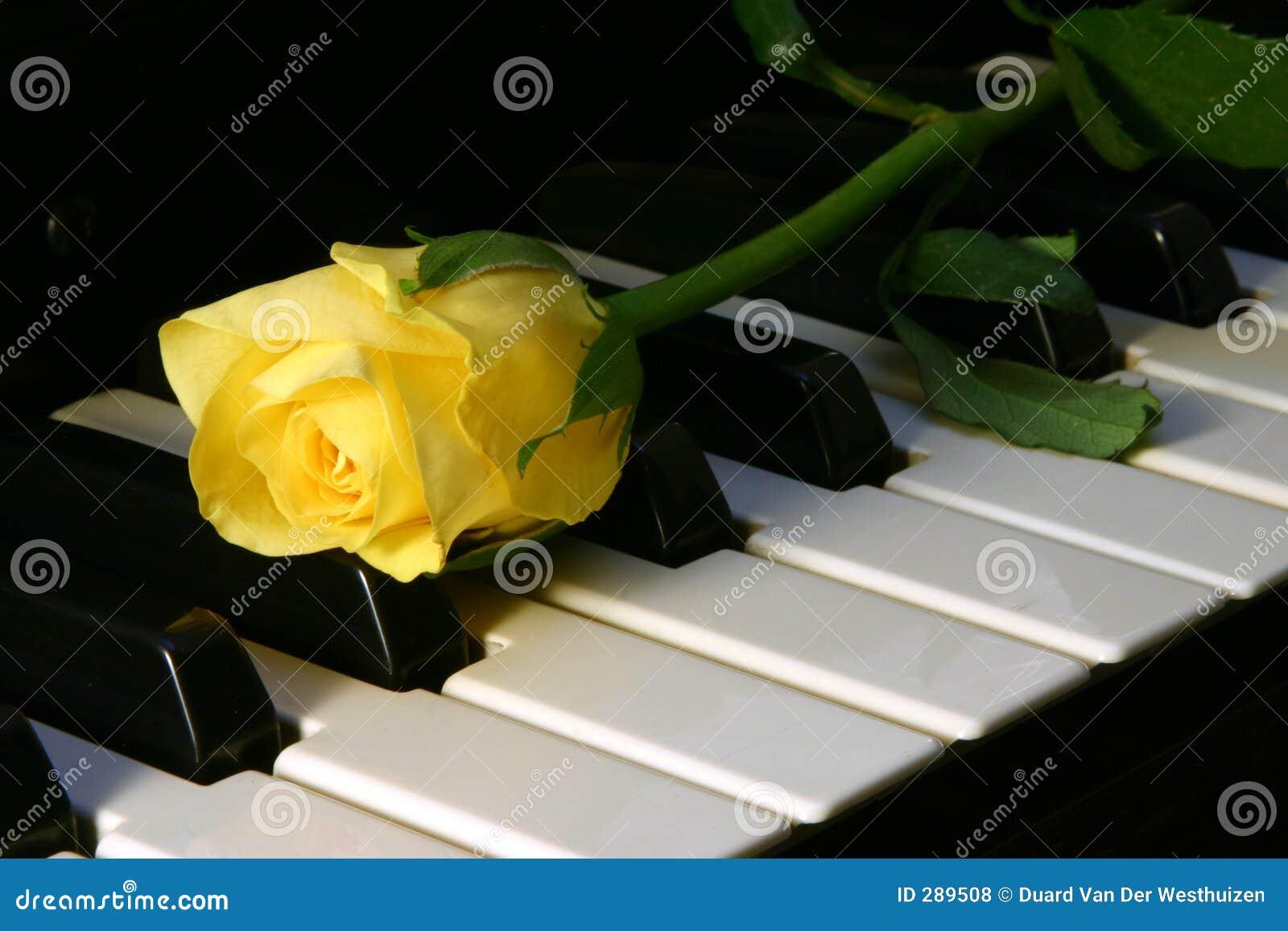 älska musik
