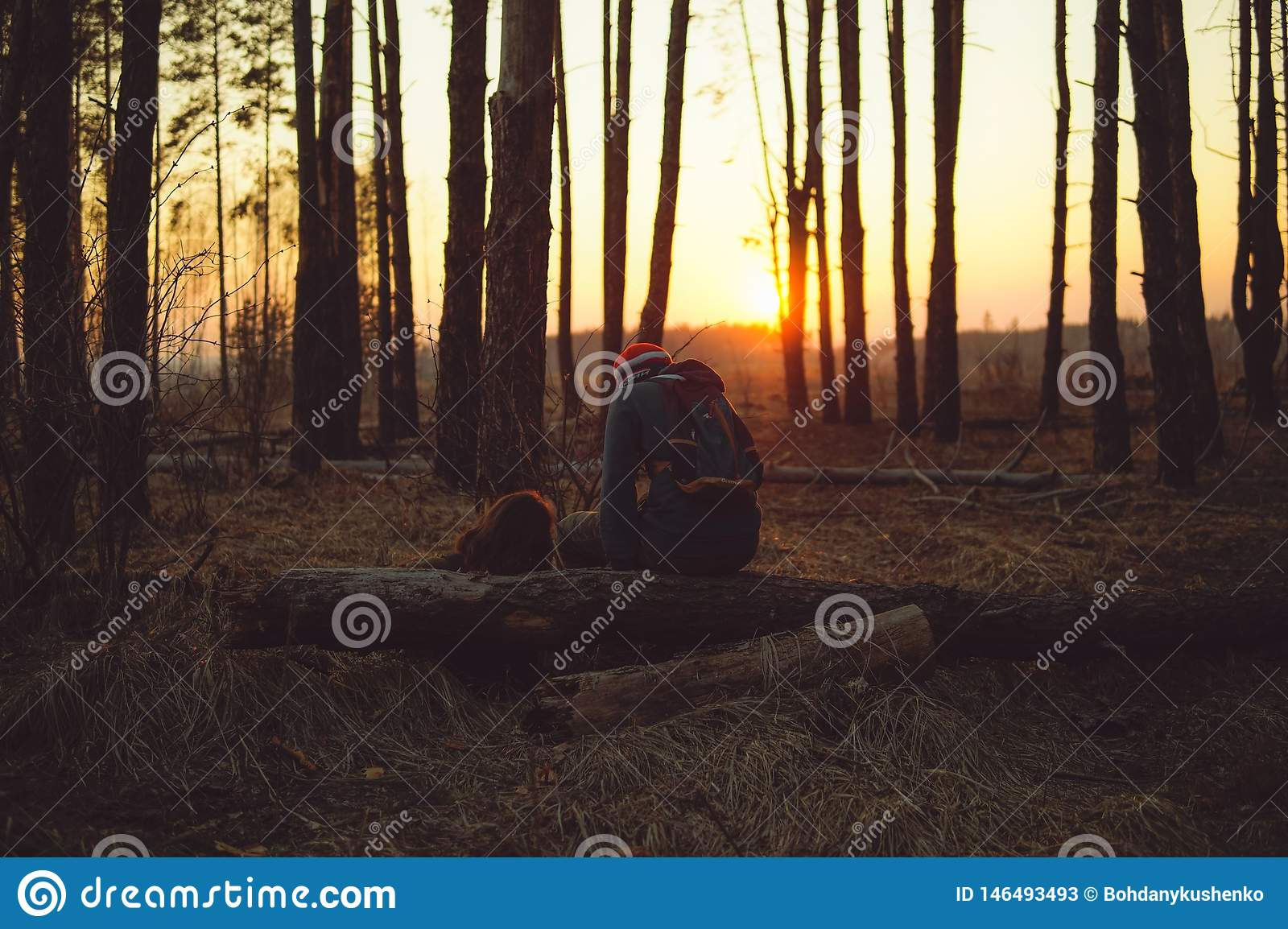 Älska par i aftonskogen
