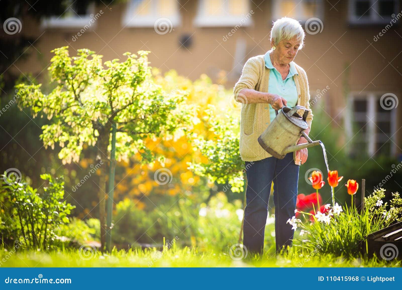 Ältere Frau, die einiges im Garten arbeitet in ihrem reizenden Garten tut