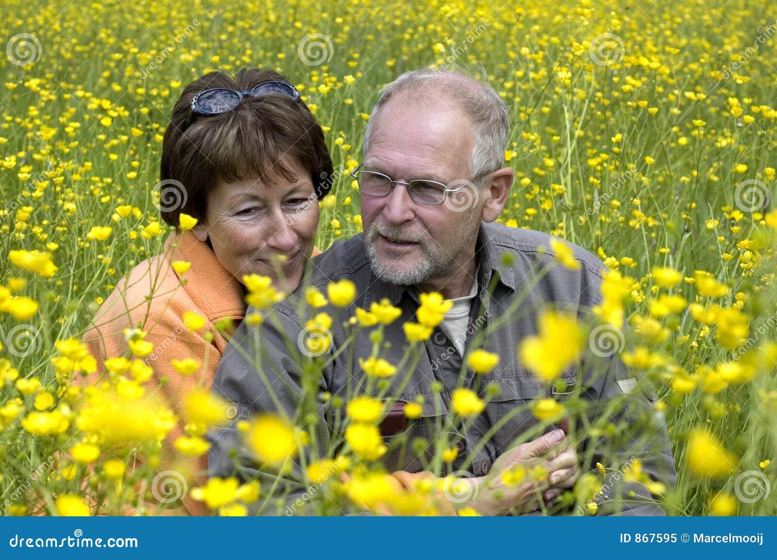Ältere Paare auf einem Butterblumegebiet