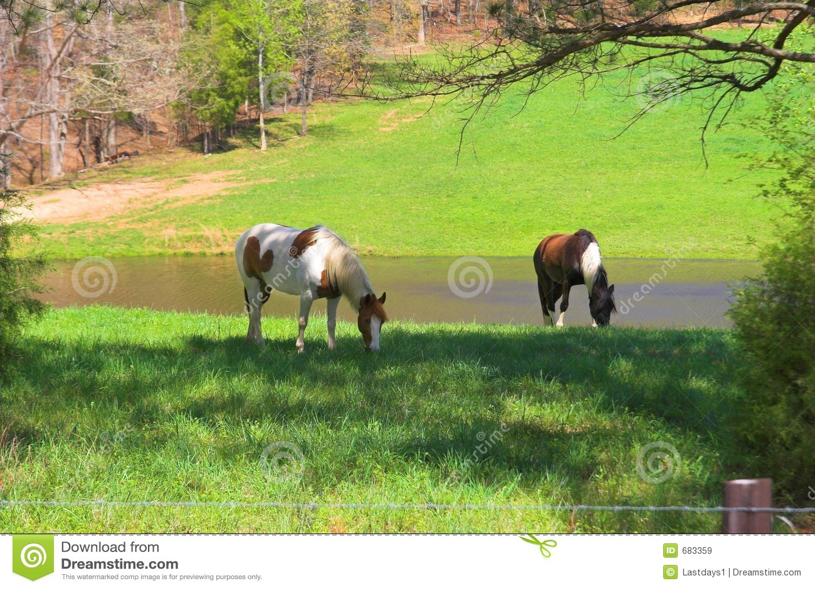 ängar för hästar 2a