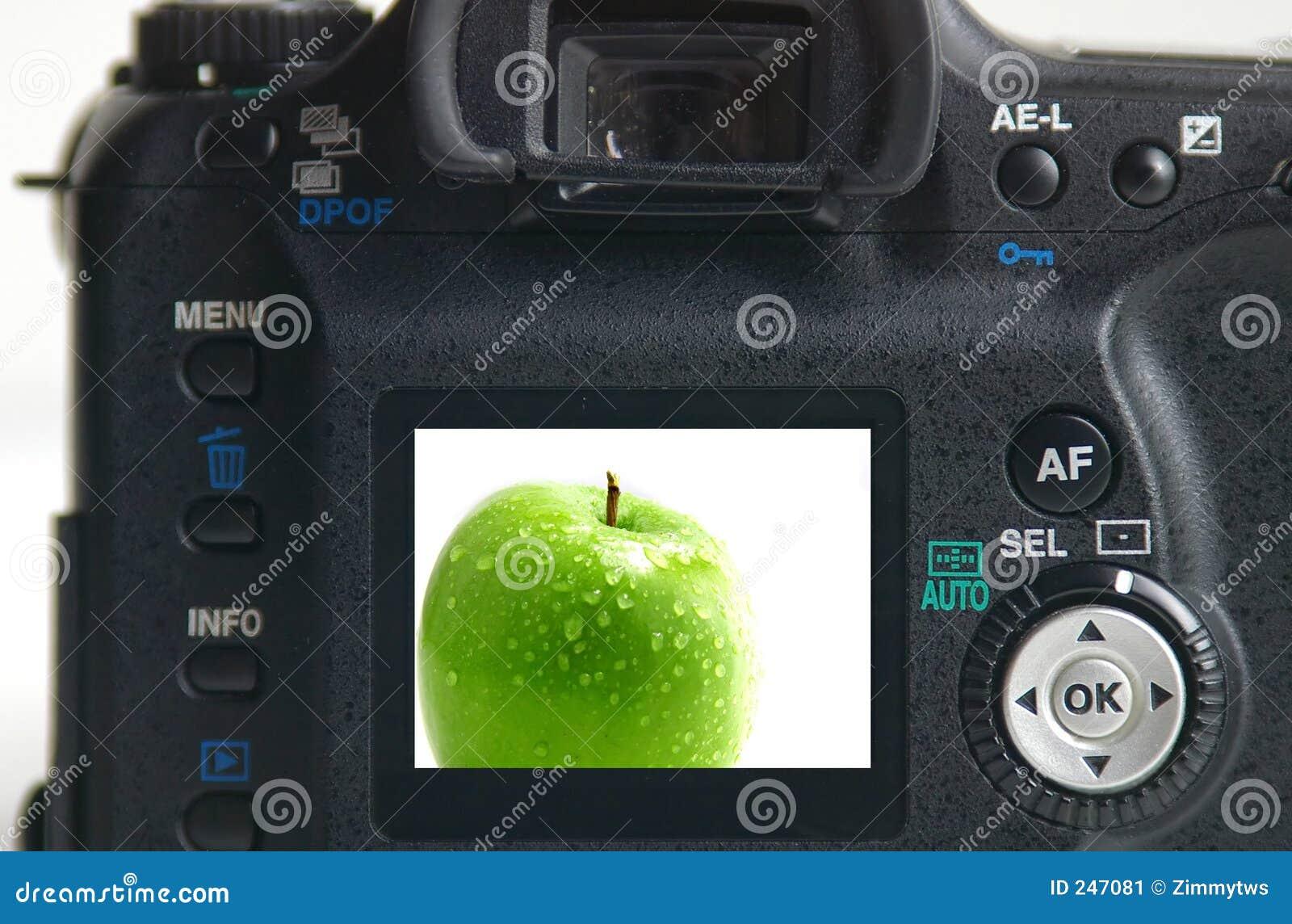 äpple - grön bild