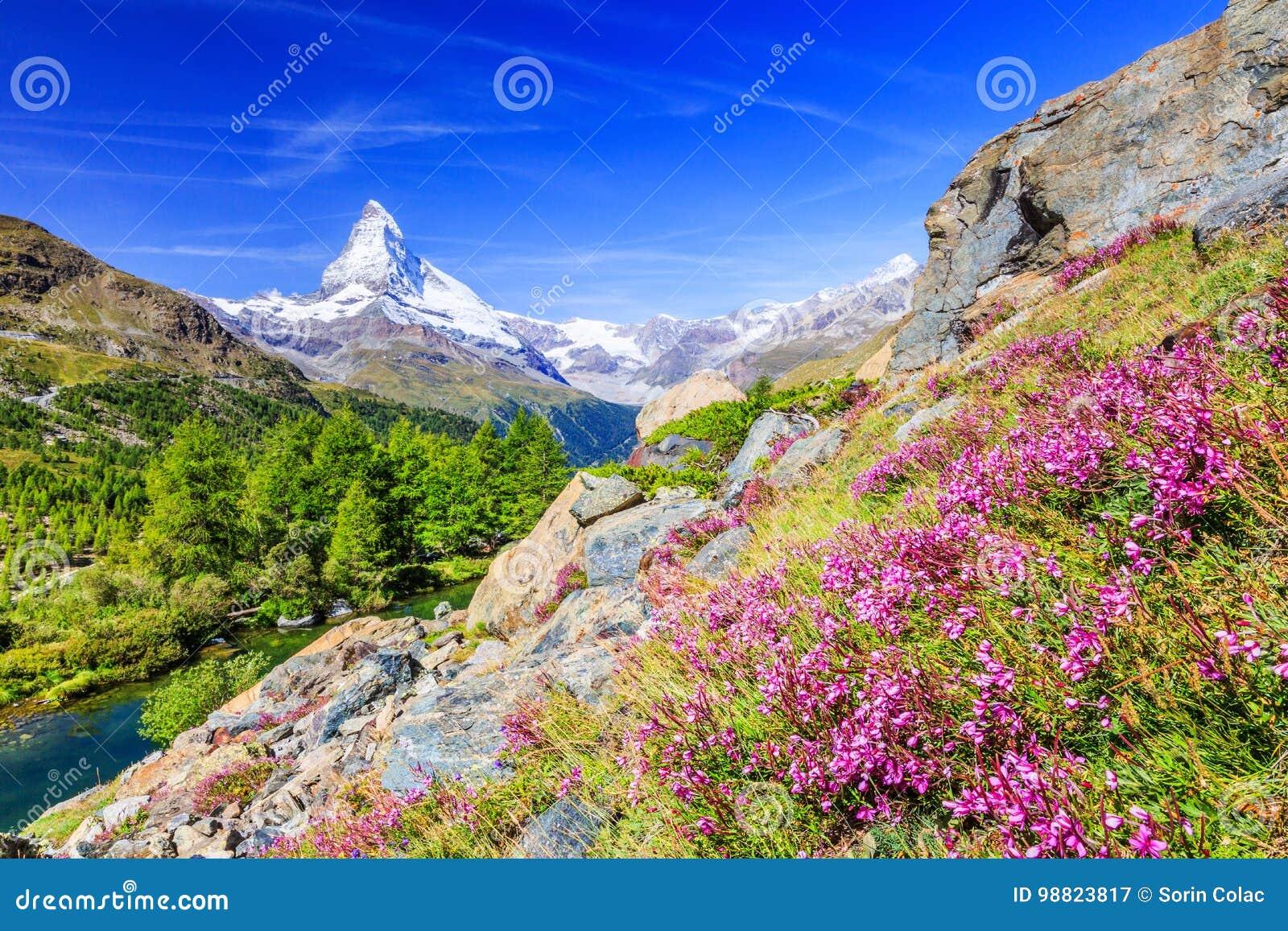 är 7th august boende 2010 kan den Europa hotellbilden schweiziska switzerland som tas deras till turismturister som det tradition