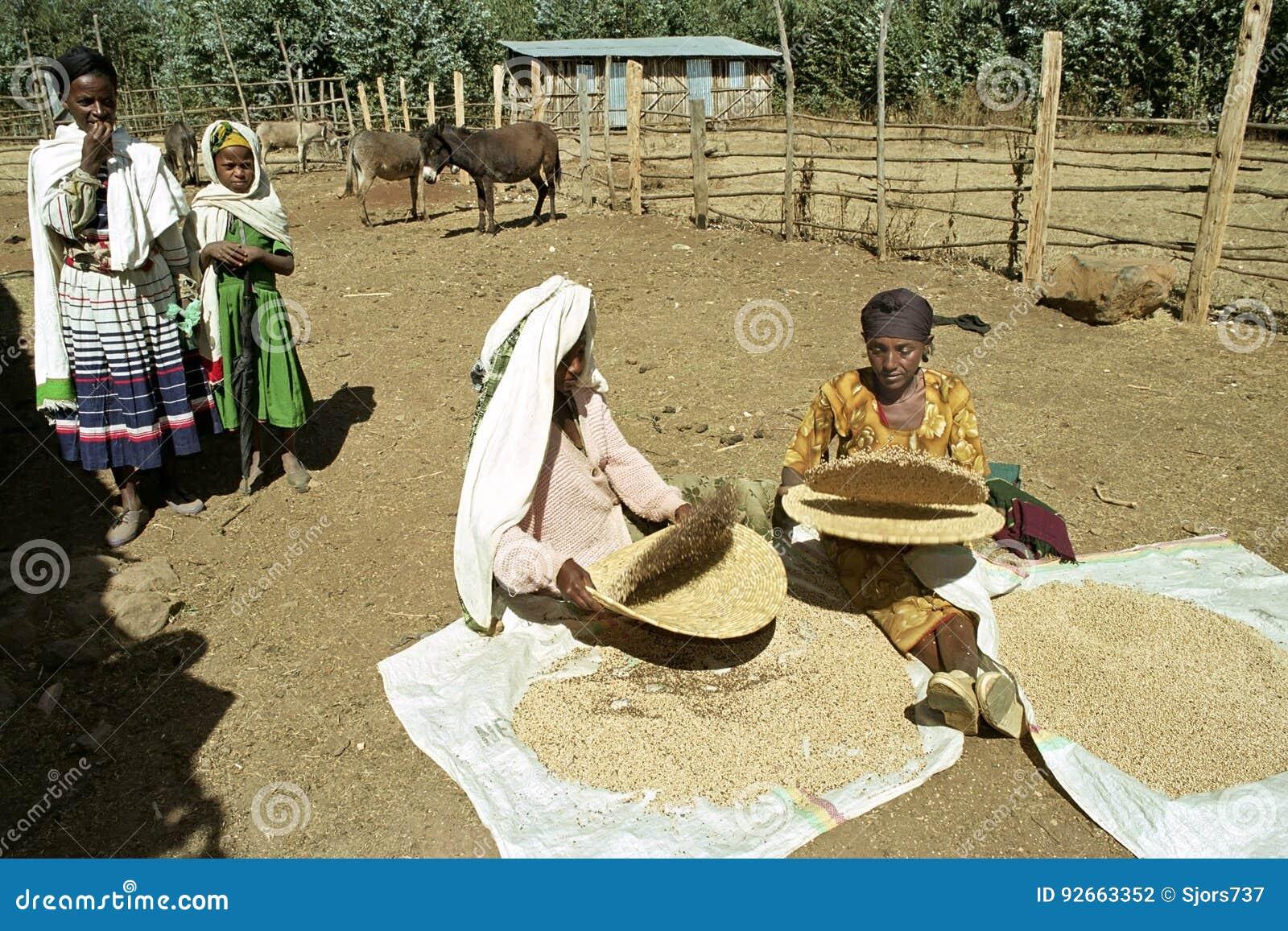 äthiopische frauen