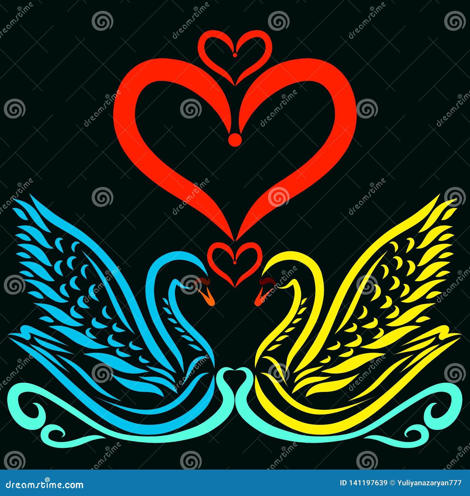 可爱的恋人天鹅和心脏在黑背景