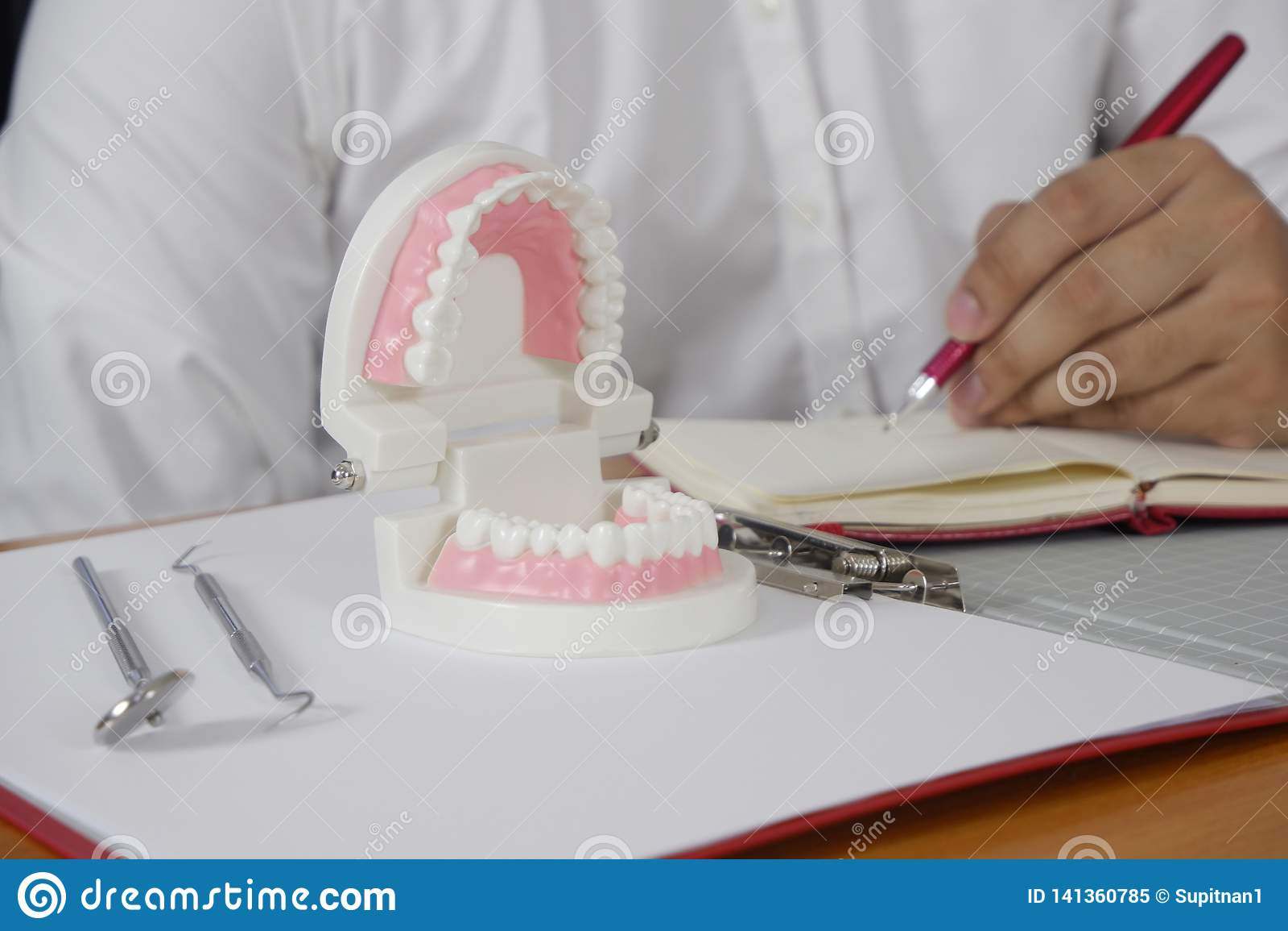坐在与牙模型的在专业牙齿诊所,牙齿和医疗概念的桌和工具上的牙医