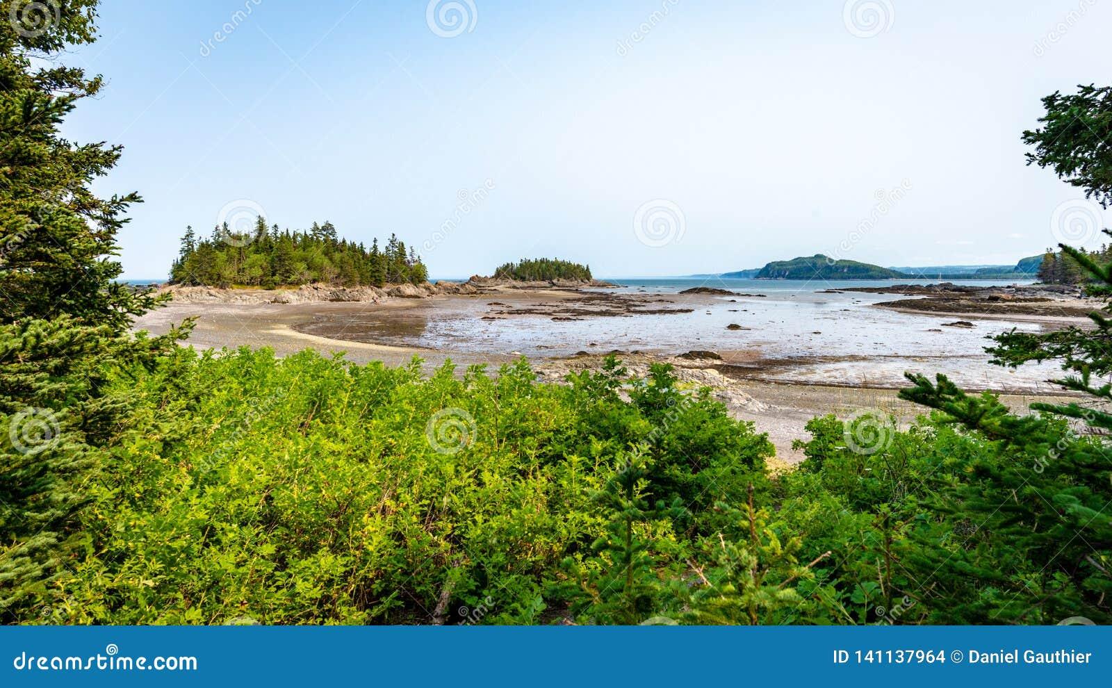 处于低潮中海岛和入口,魁北克