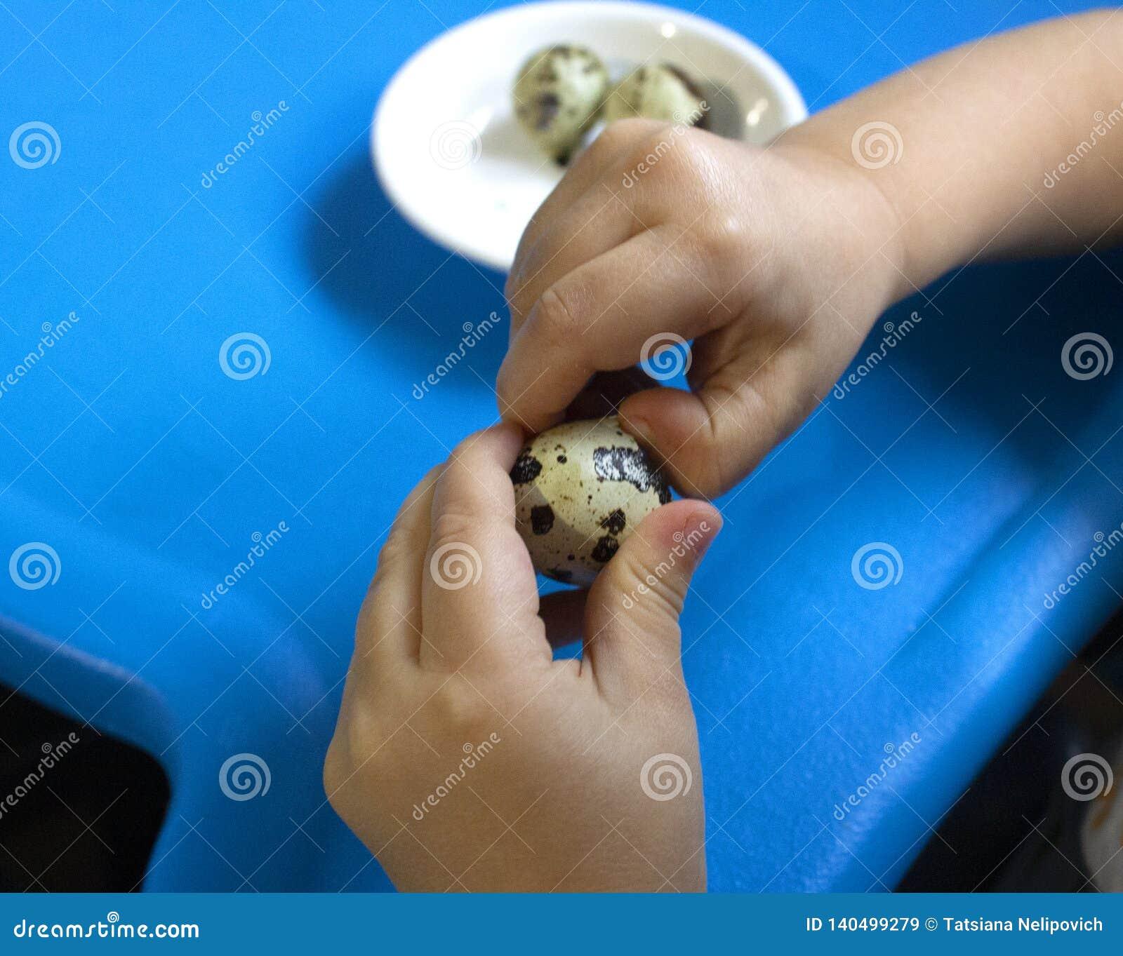 婴孩和鹌鹑蛋