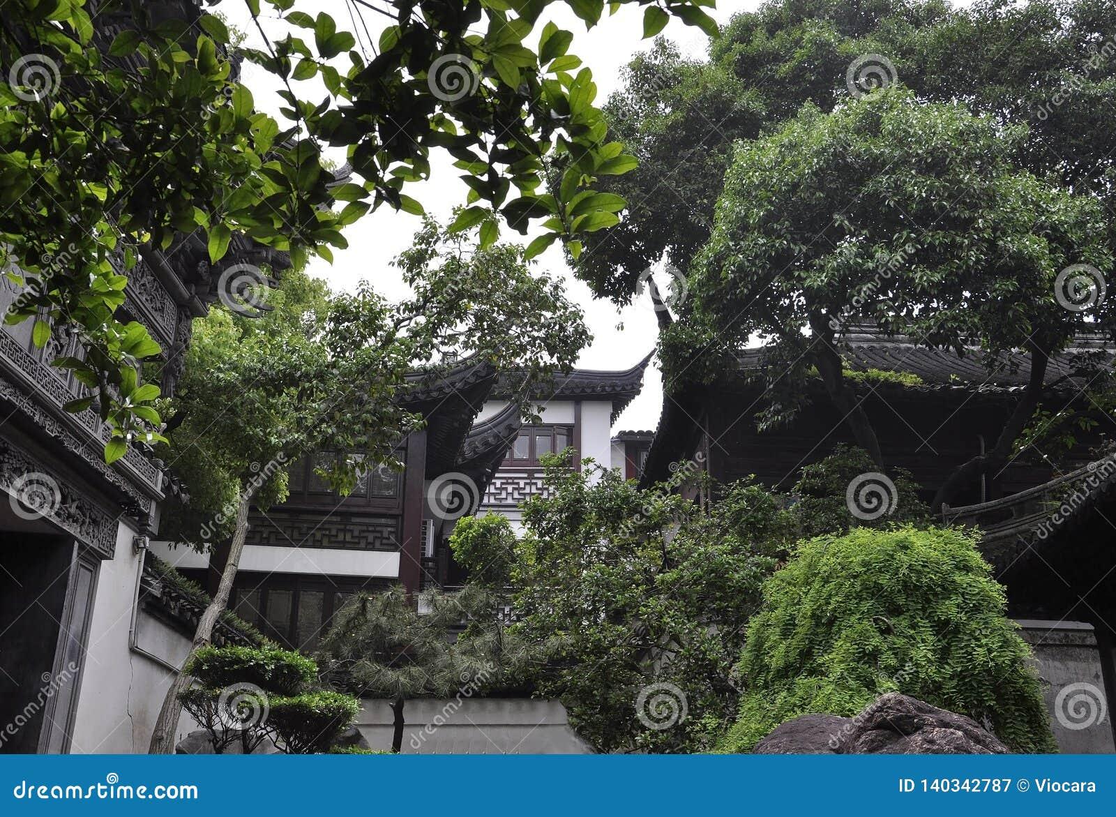 平底锅家庭议院的庭院风景从著名Yu庭院的上海街市的