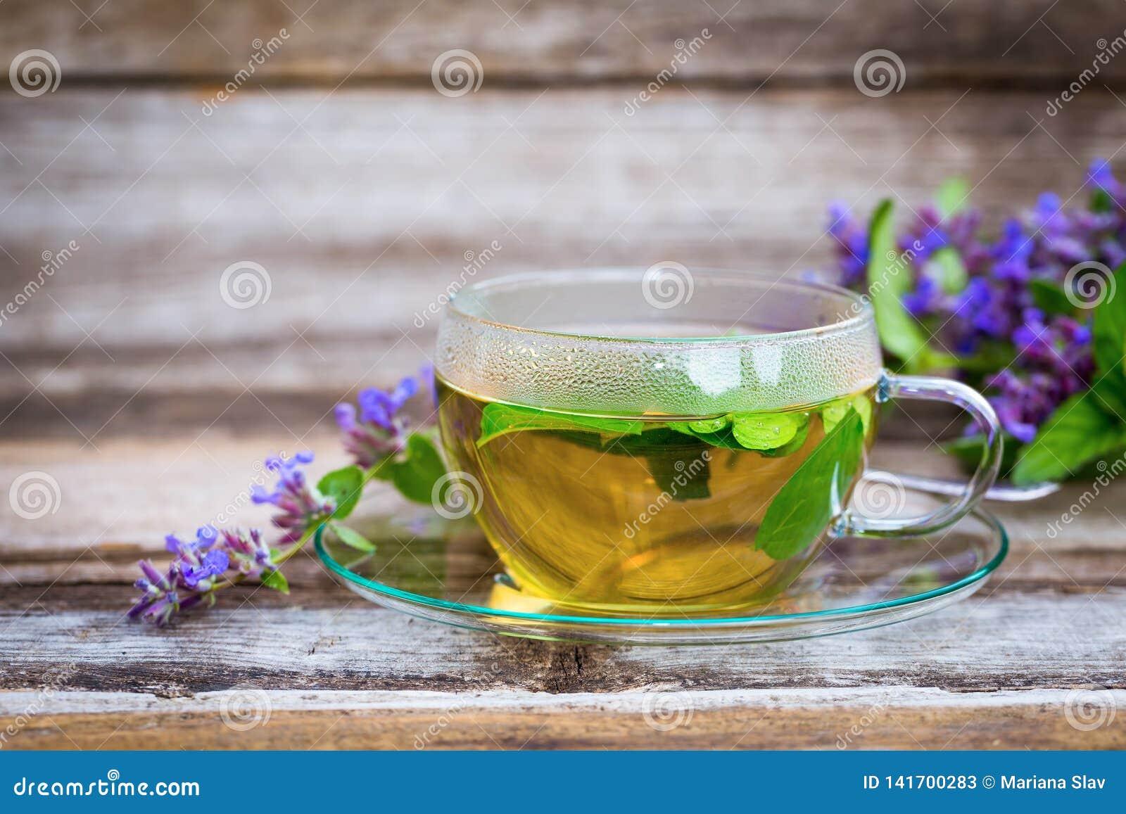 在一个玻璃杯子的新鲜的猫薄荷茶