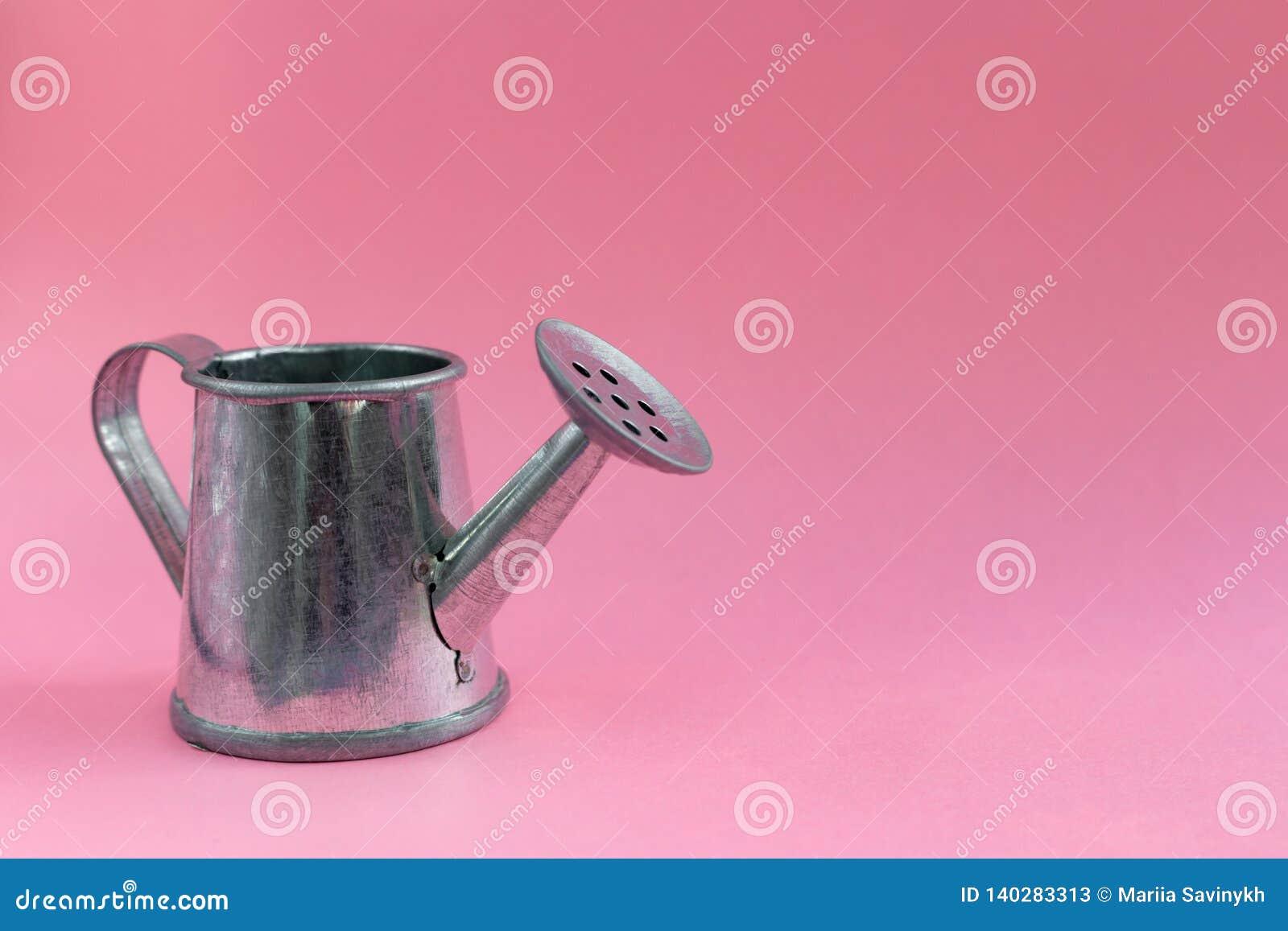 在五颜六色的桃红色背景的金属钢喷壶