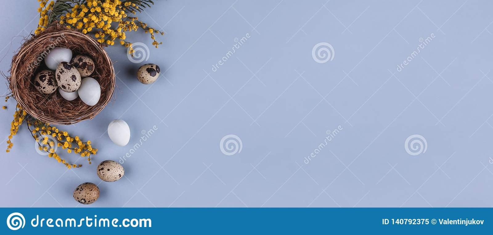 在巢和春天花的复活节彩蛋在假日背景 与拷贝空间的顶视图 看板卡愉快的复活节