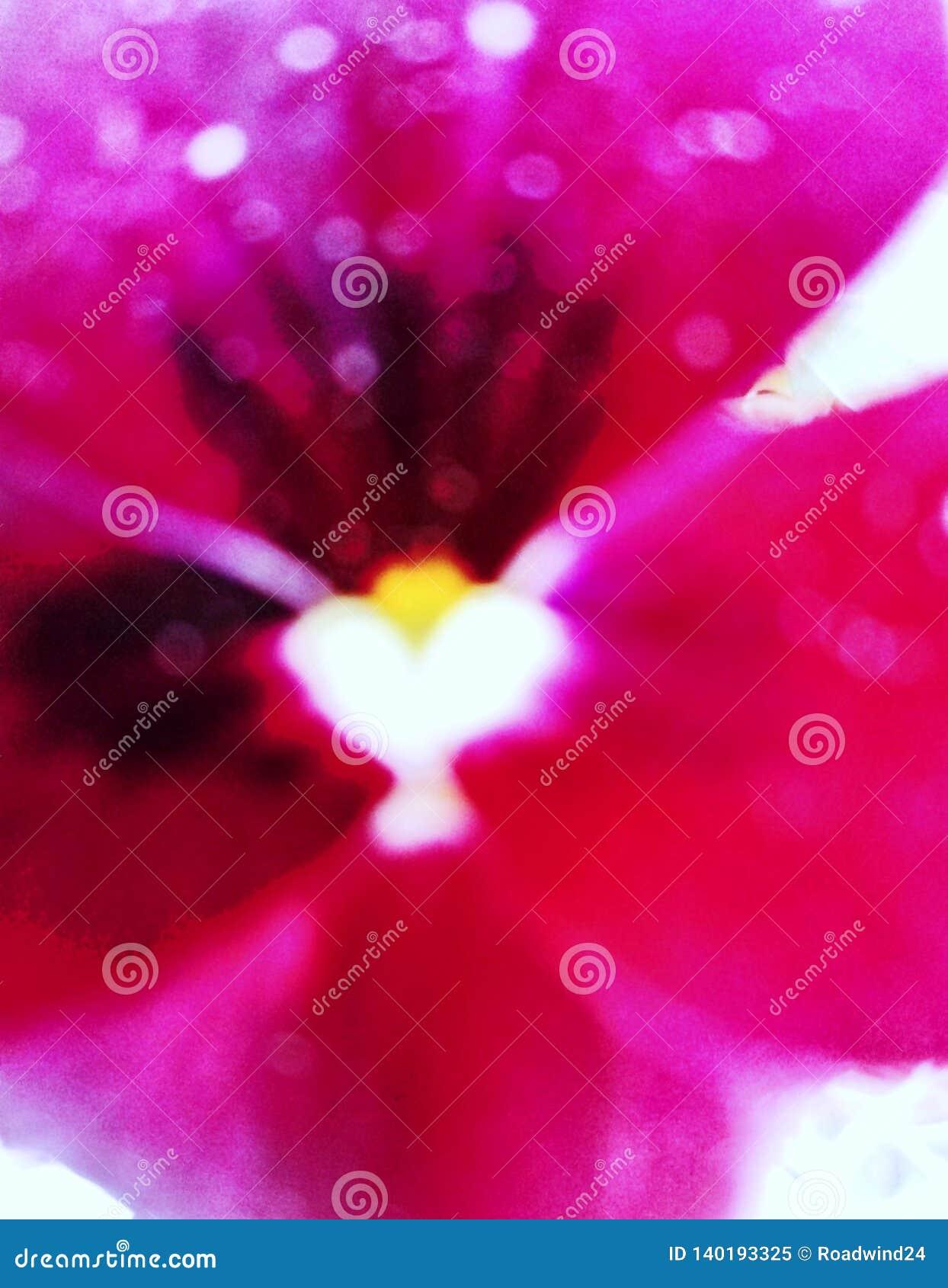 在心脏里面的心脏在紫色花